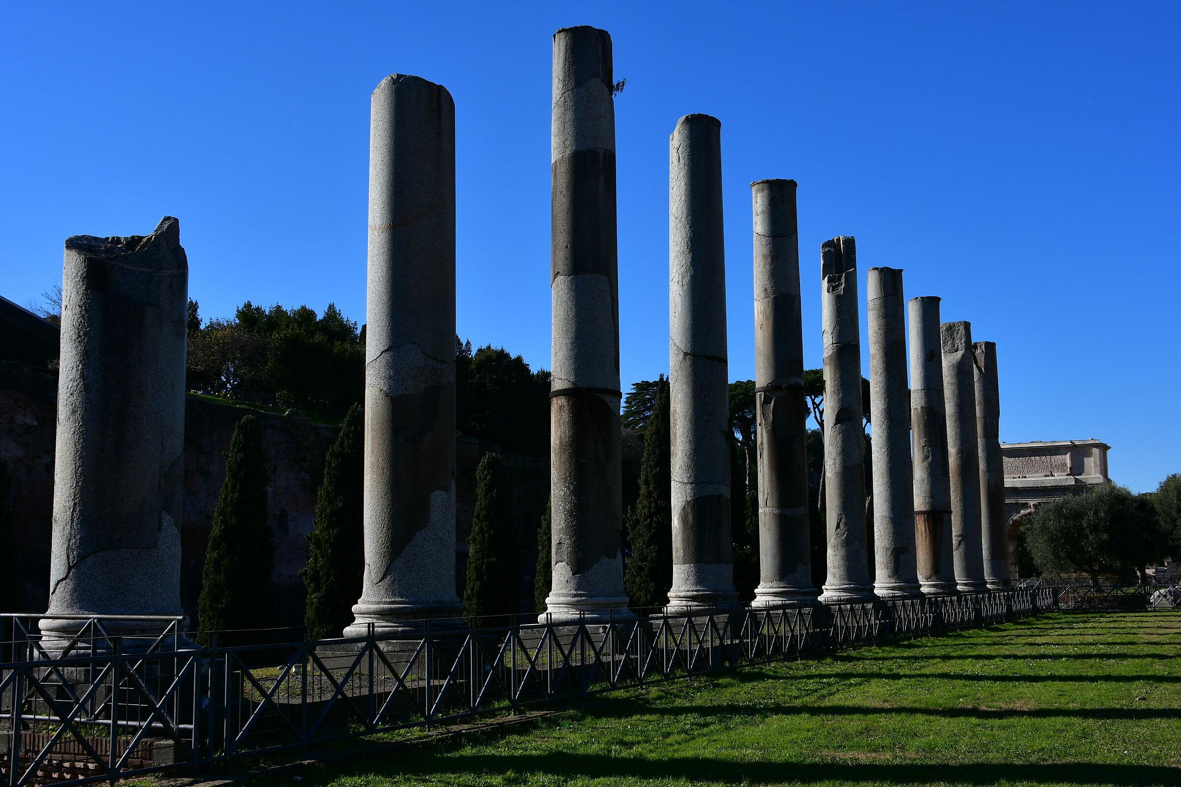 Roman Forum...