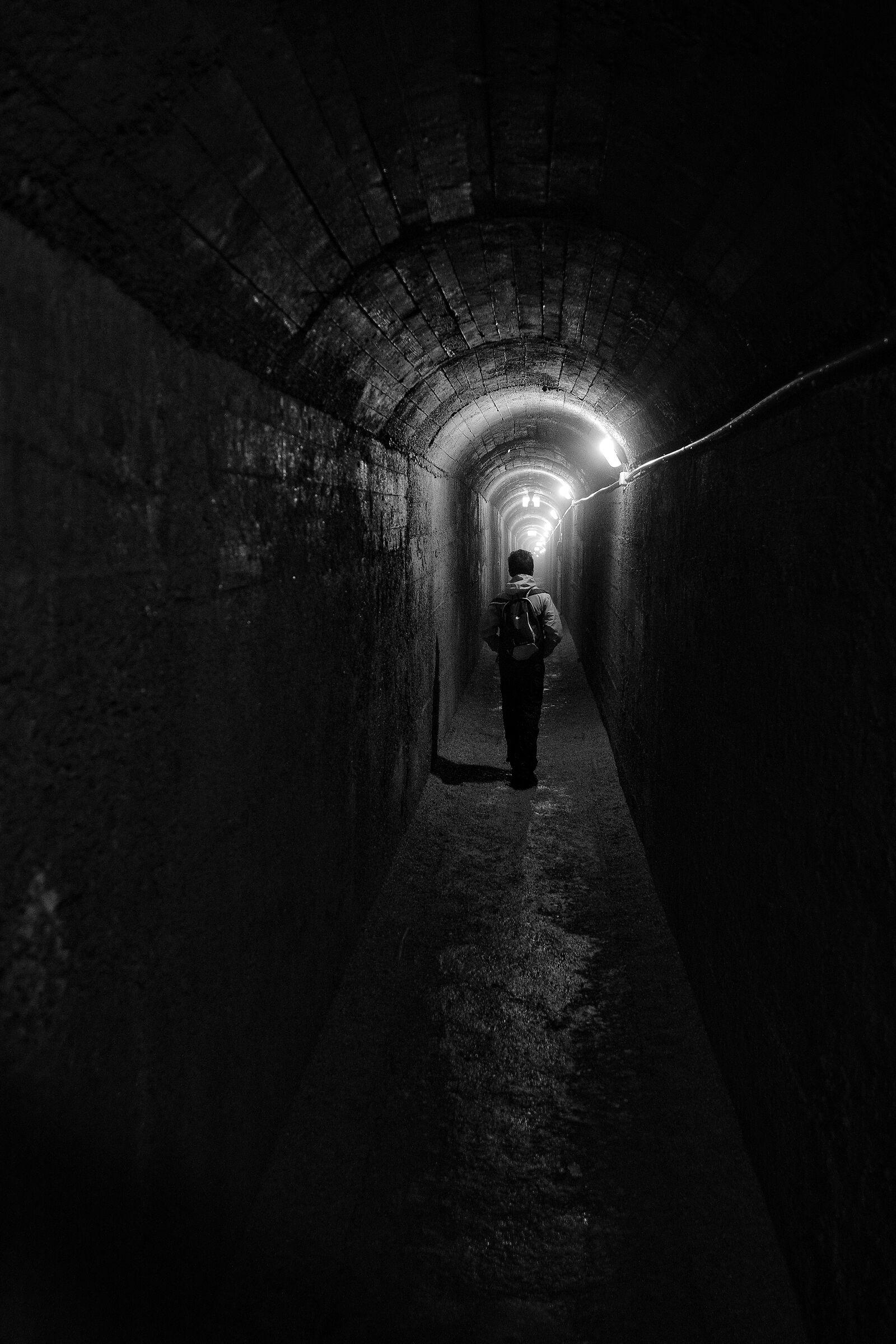 Usciamo dal tunnel...