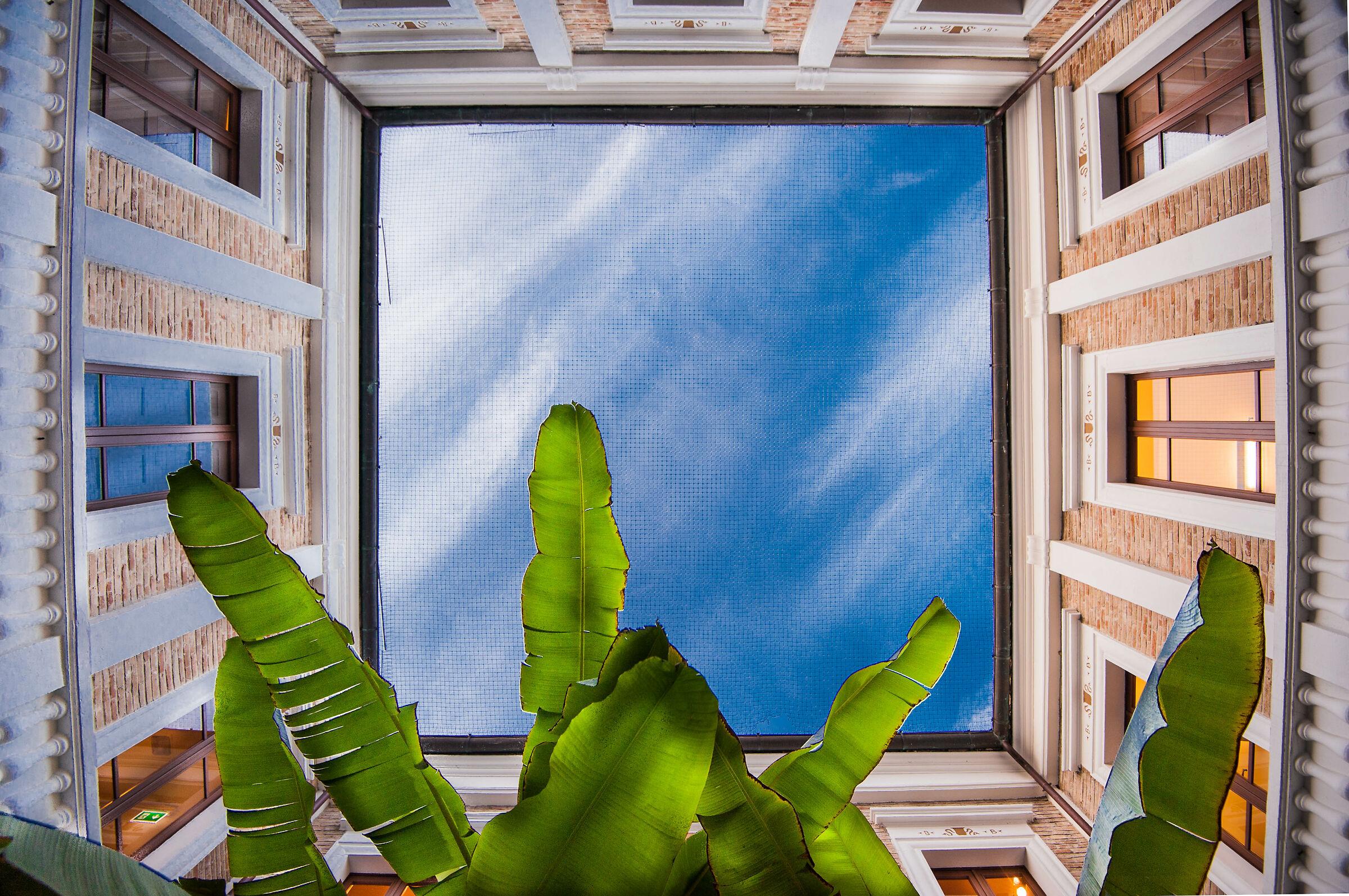 Il cielo in una stanza ......
