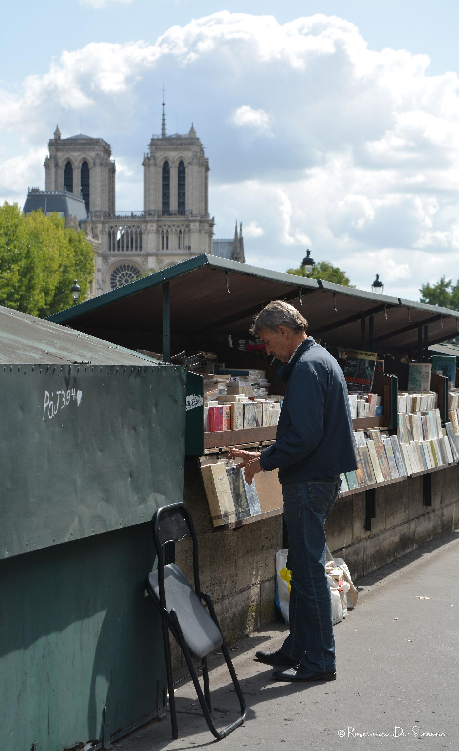 Il venditore di libri sulla Senna...