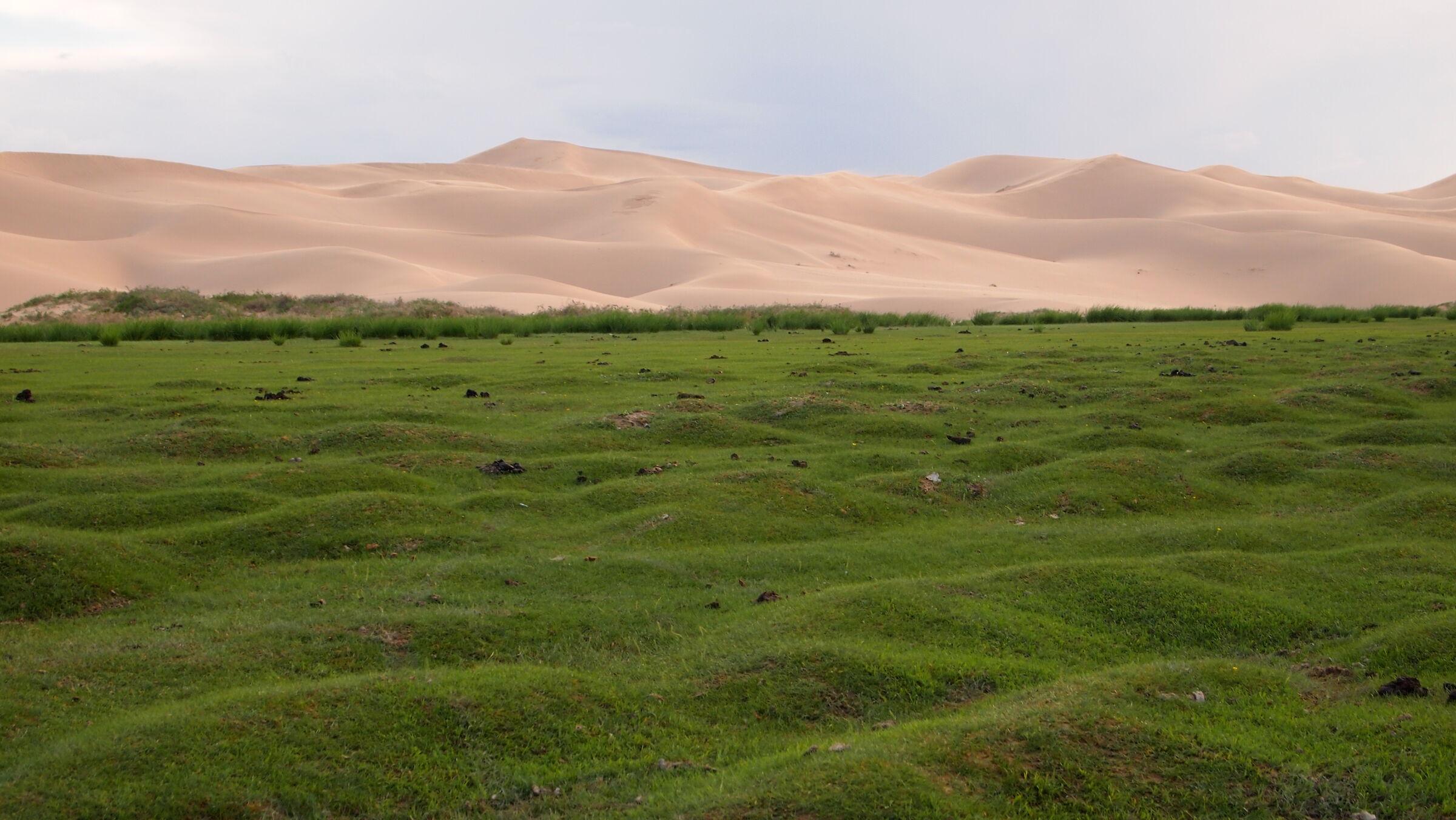 Mongolia 4...