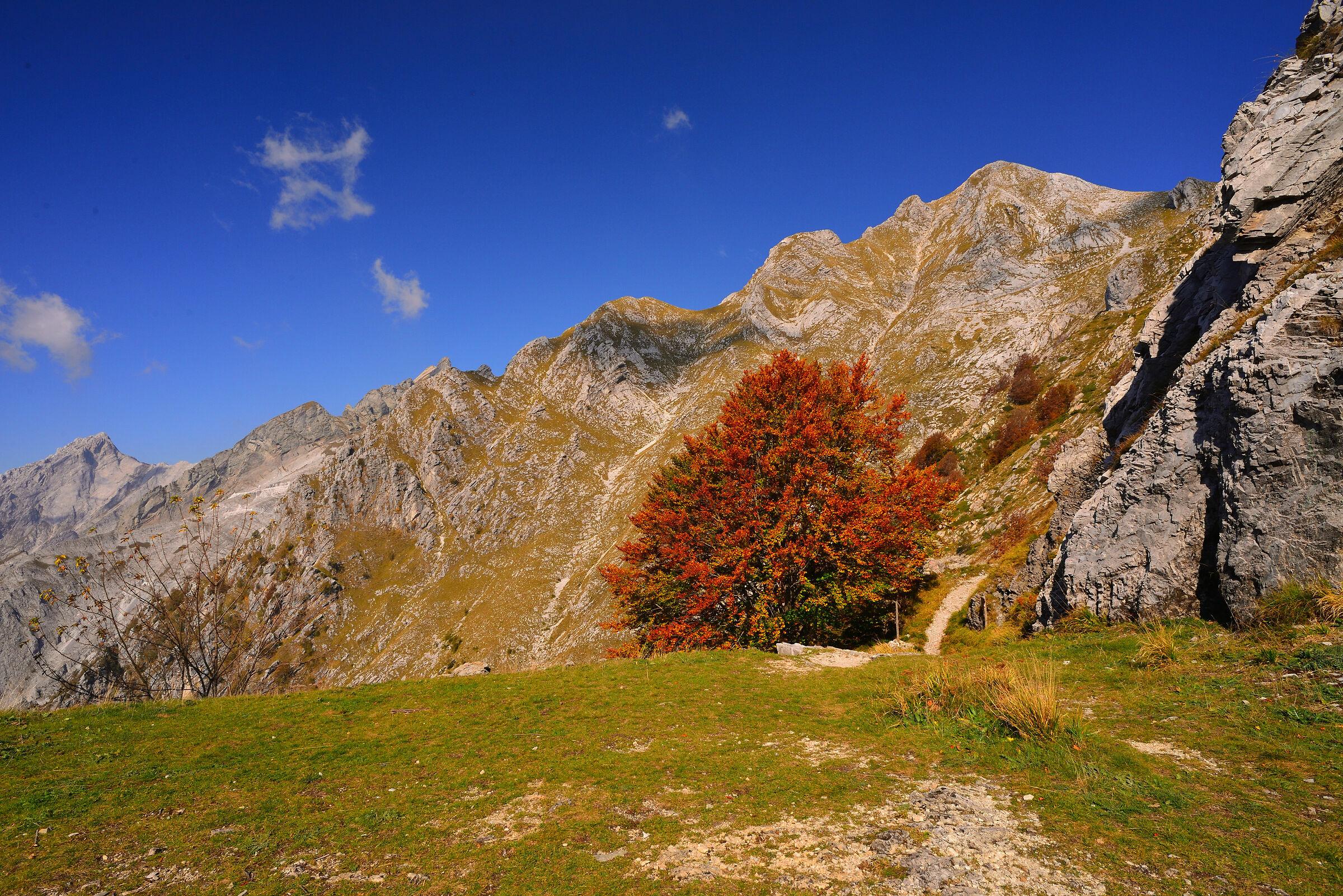 Apuan Alps...