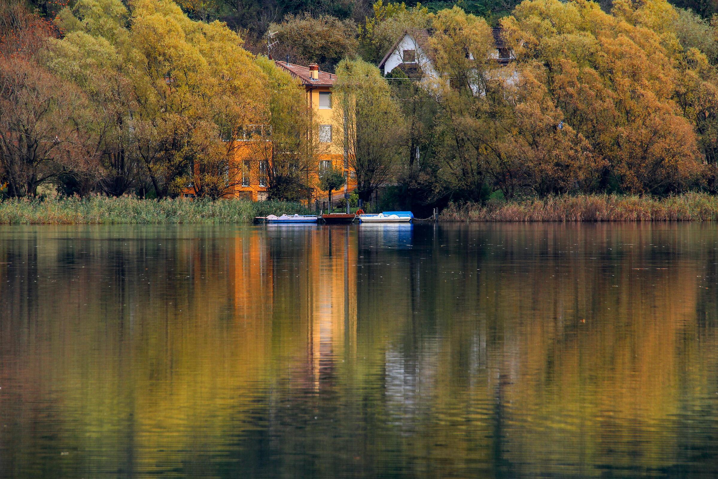 last autumn colors...