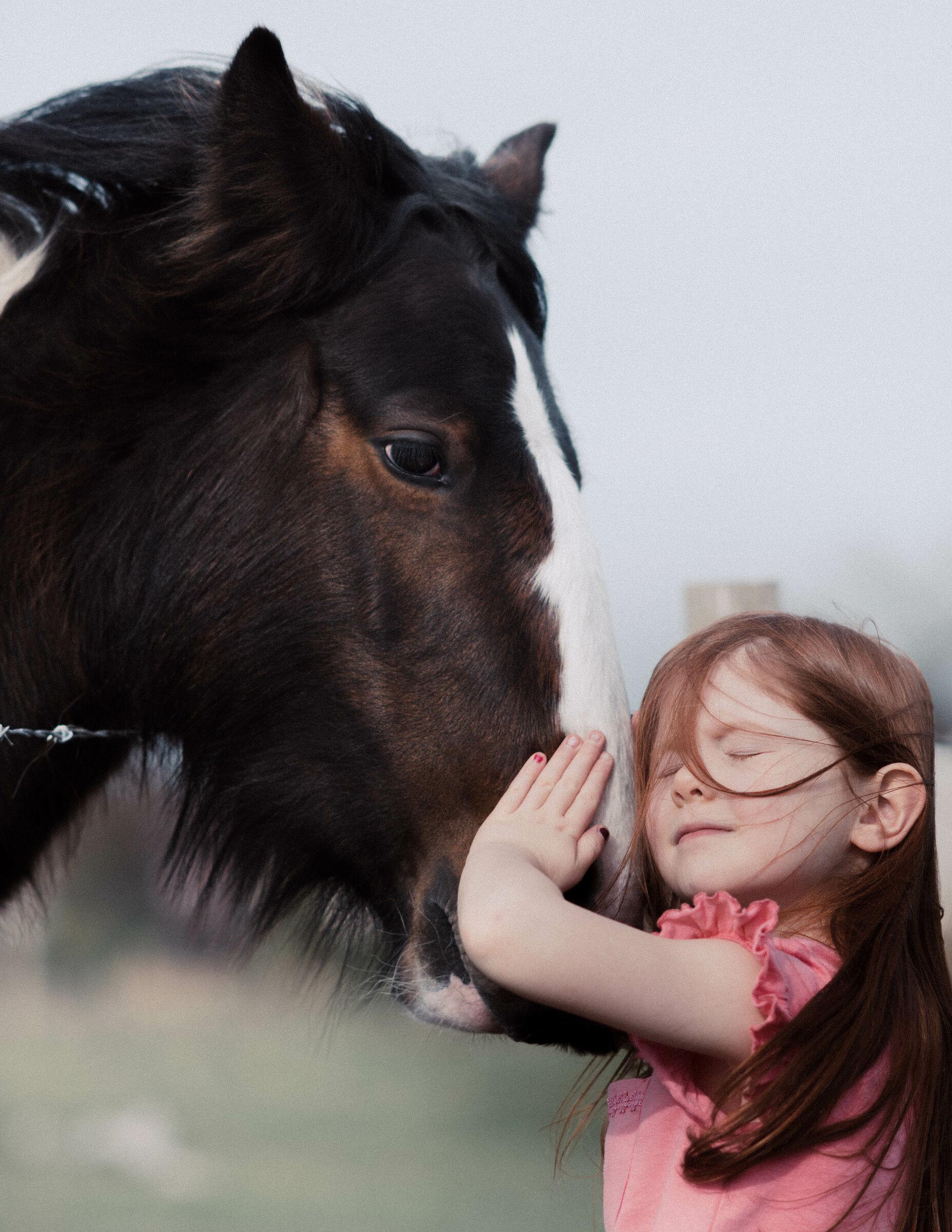 The Horse Whisperer...