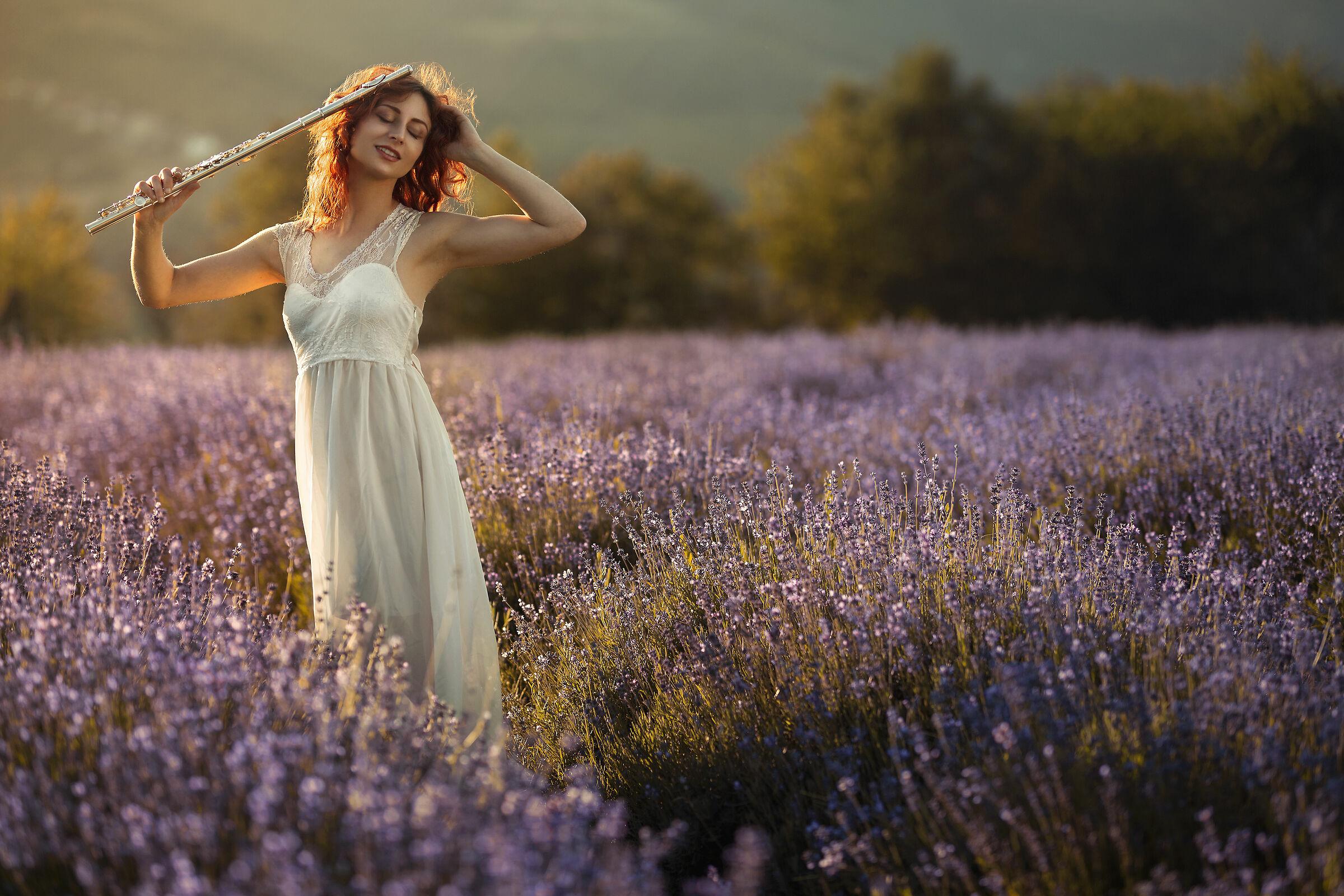 Perfume of lavender ...