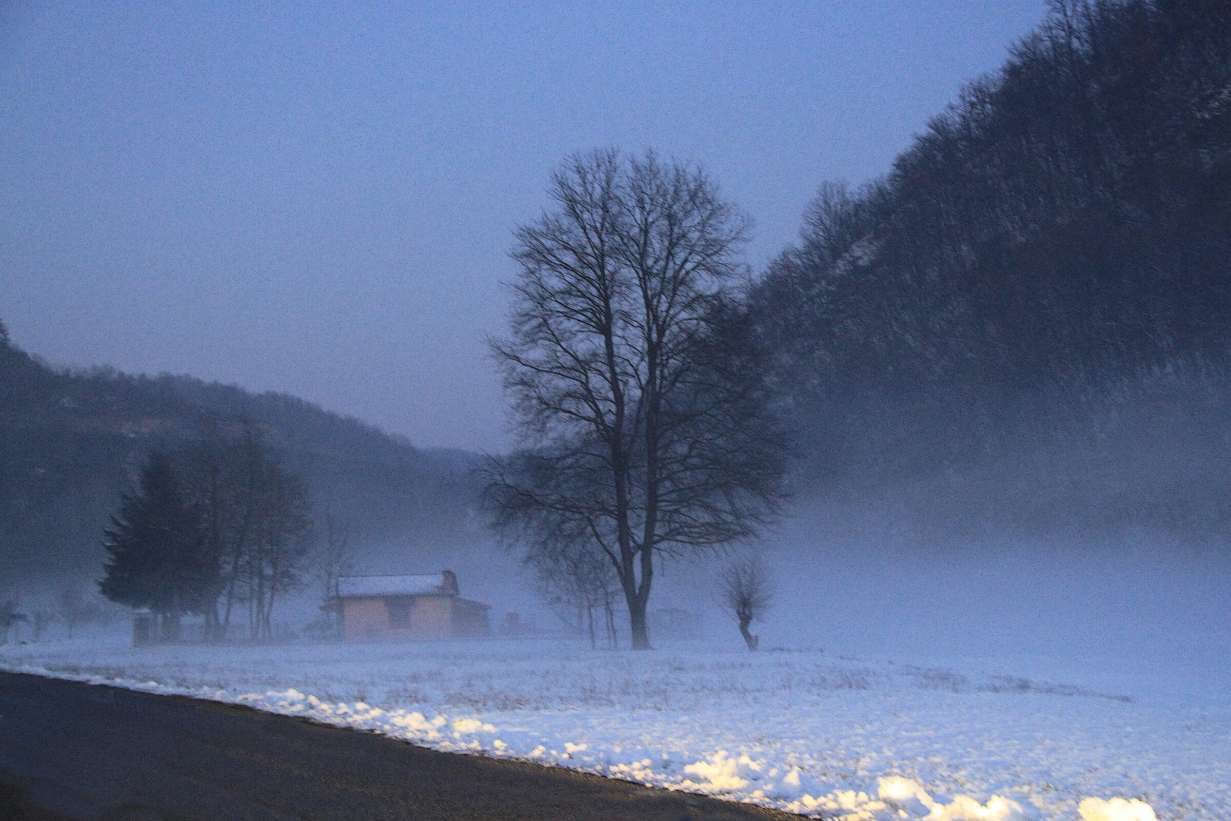Nebbia a Moline...