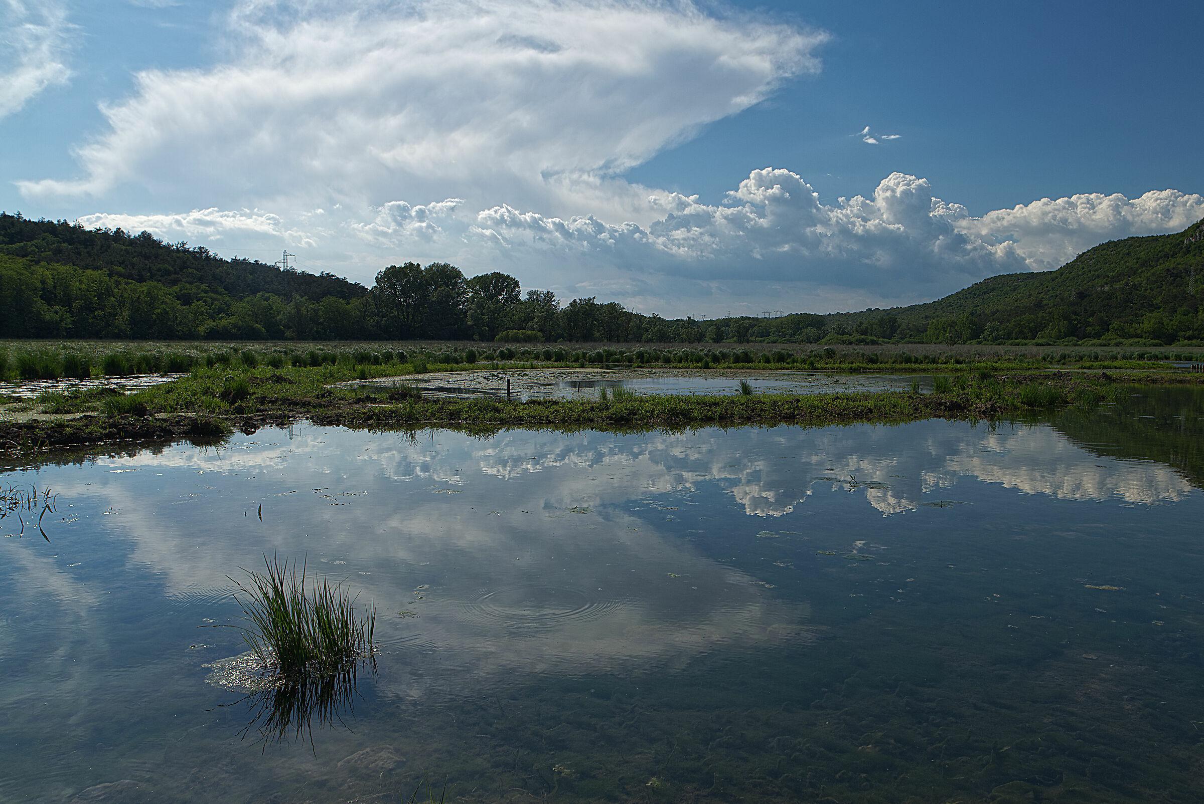 Lake Doberdò...