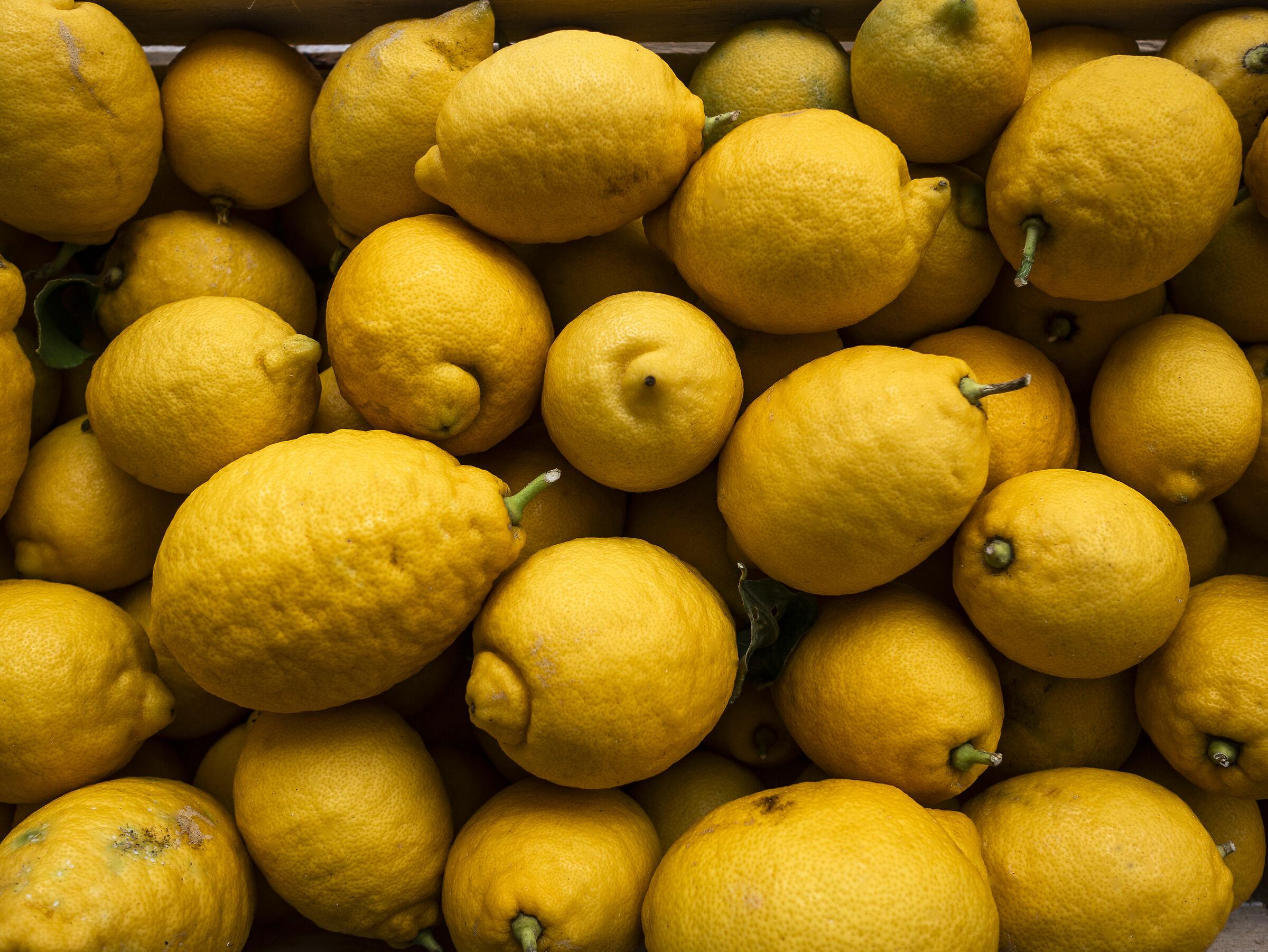 I limoni di Carini...