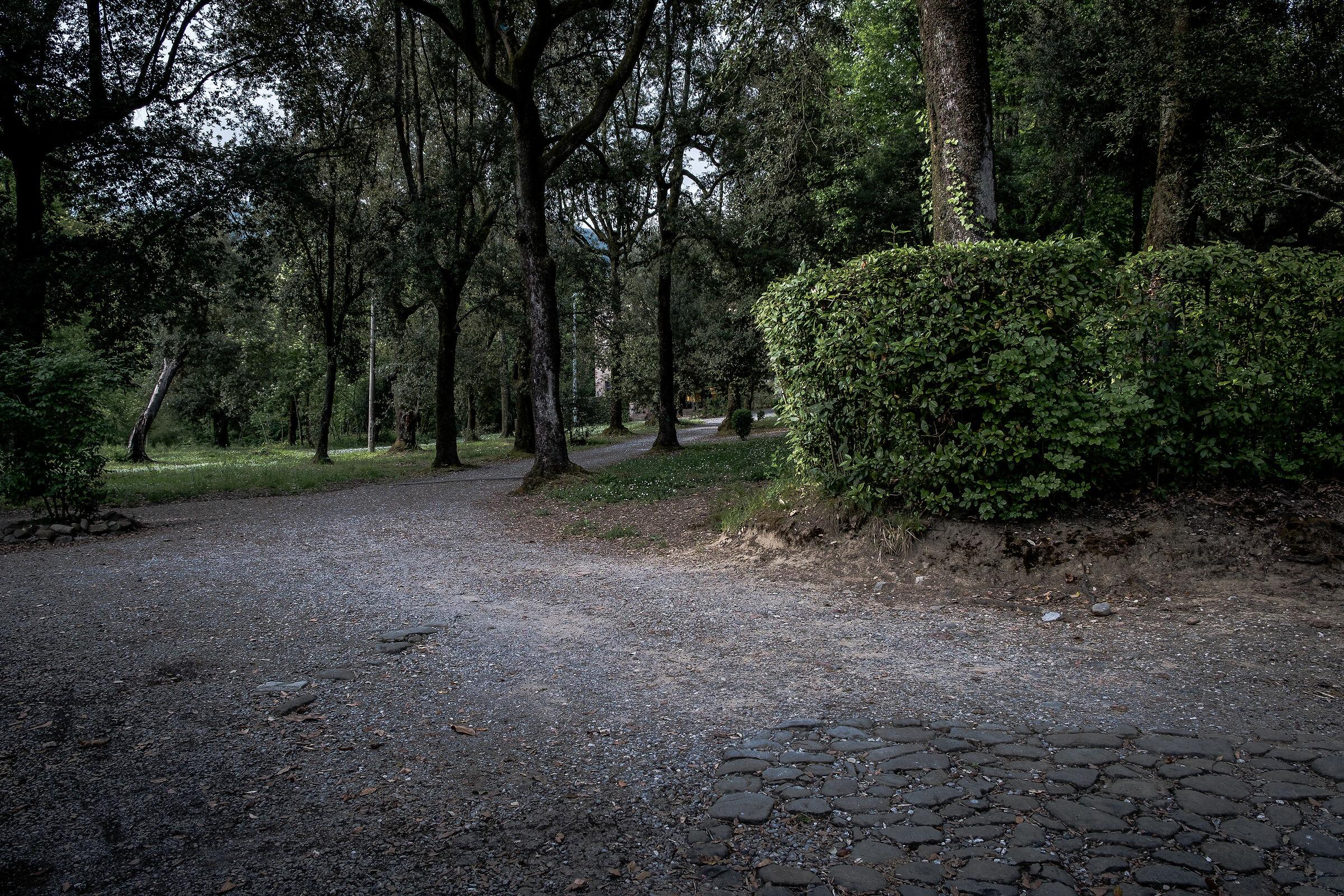 Villa Torrigiani, Lucca...