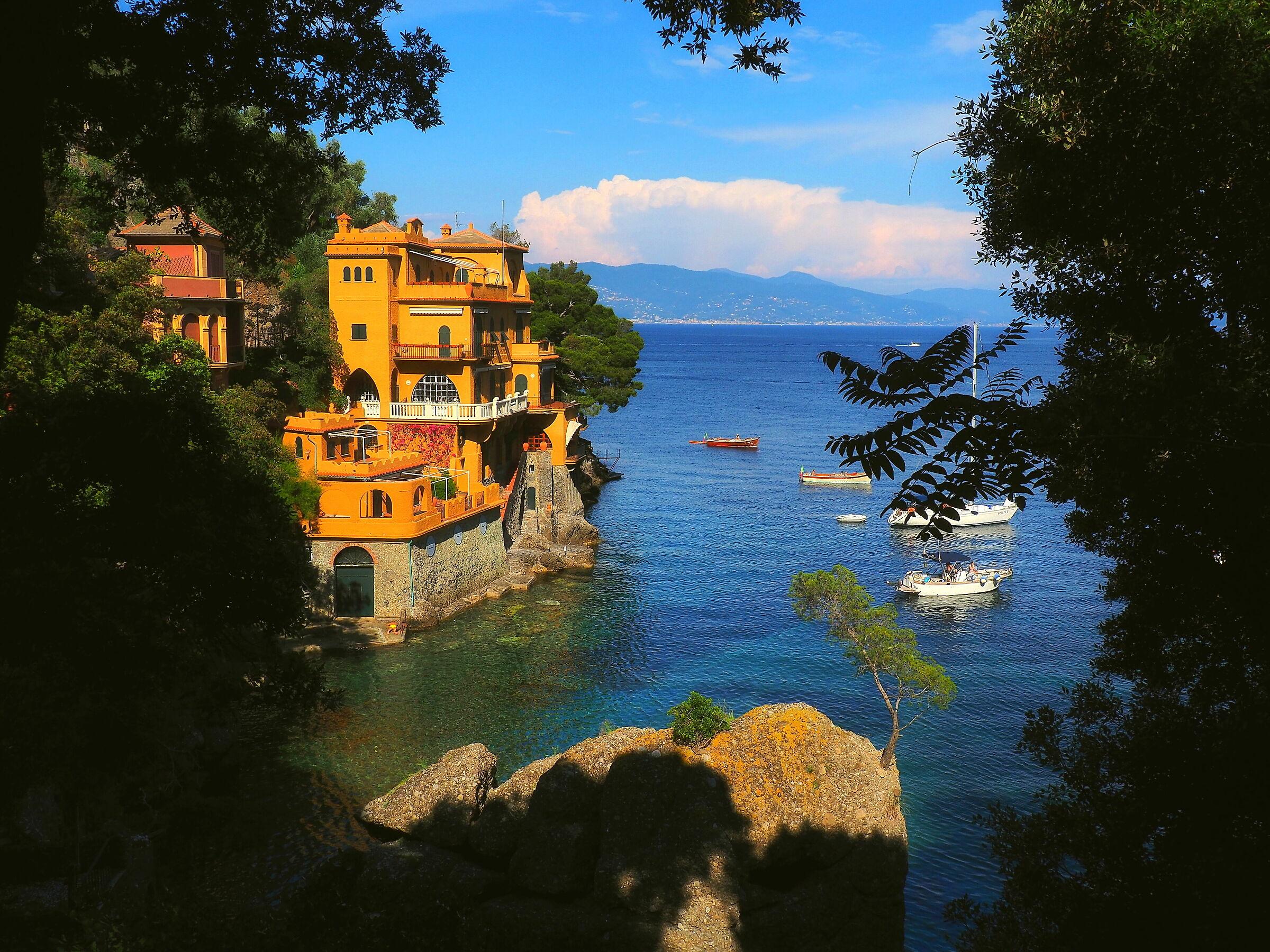 Il  mare di Portofino...