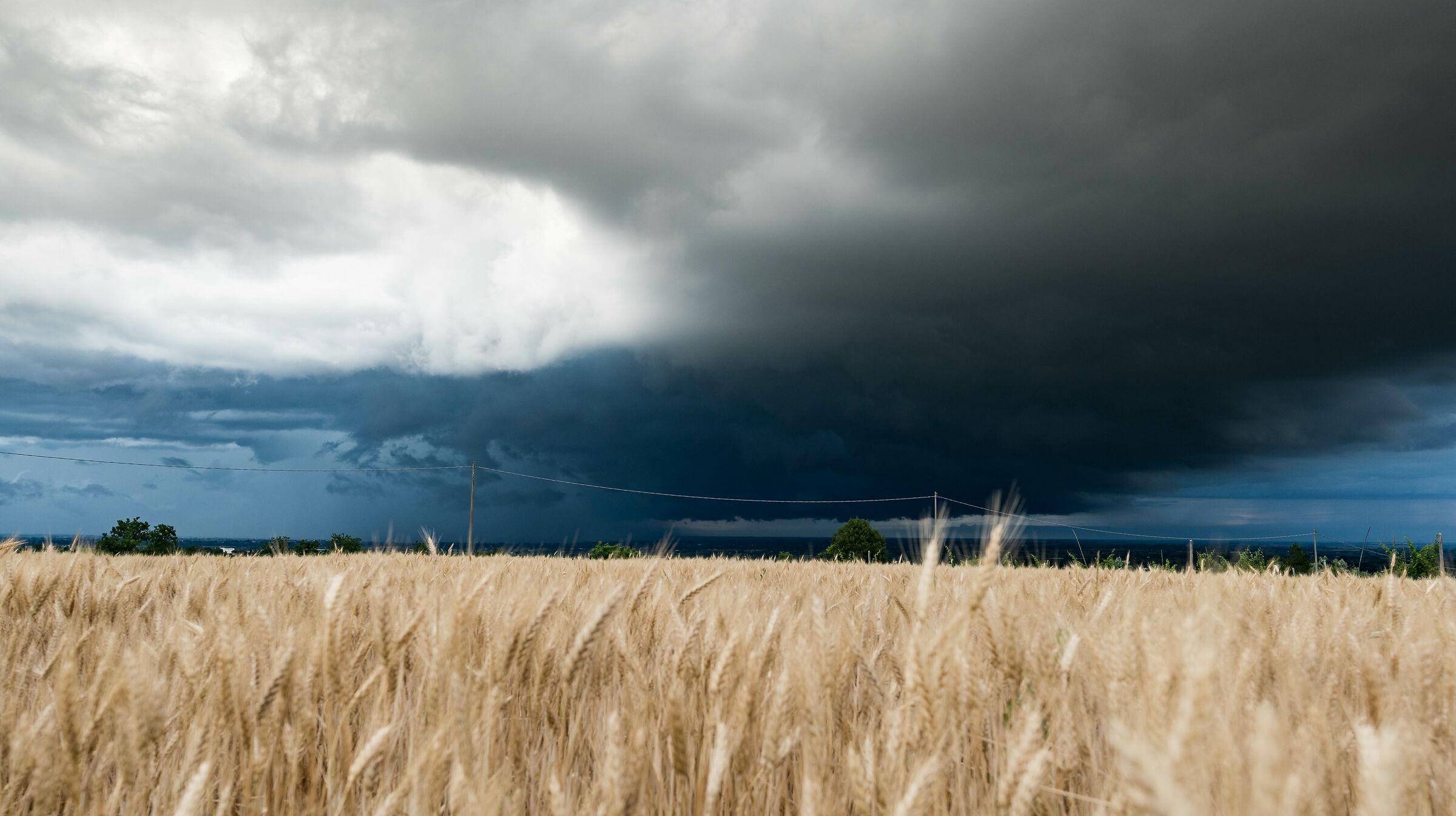 Stormy evening ...