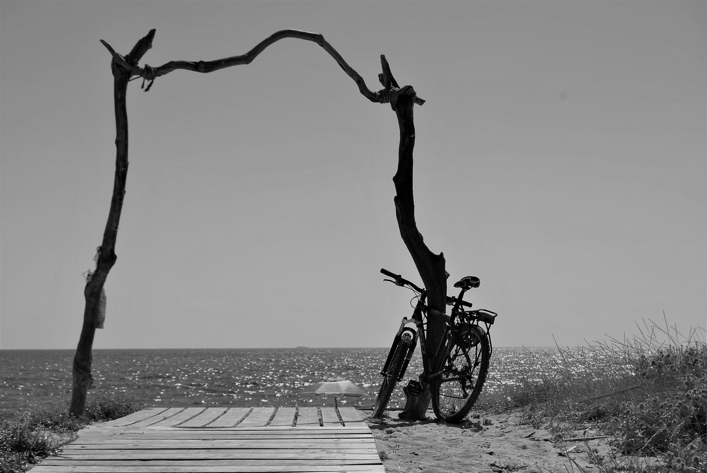 Summer cycle.......