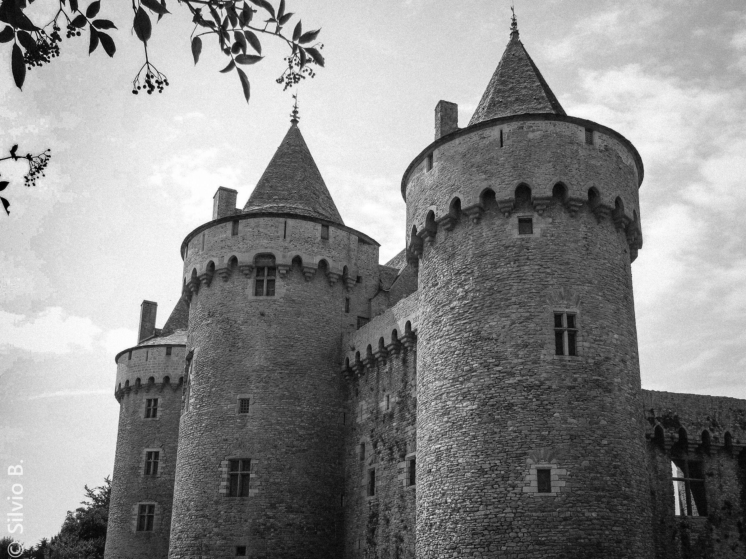 Suscinio Castle-Brittany...