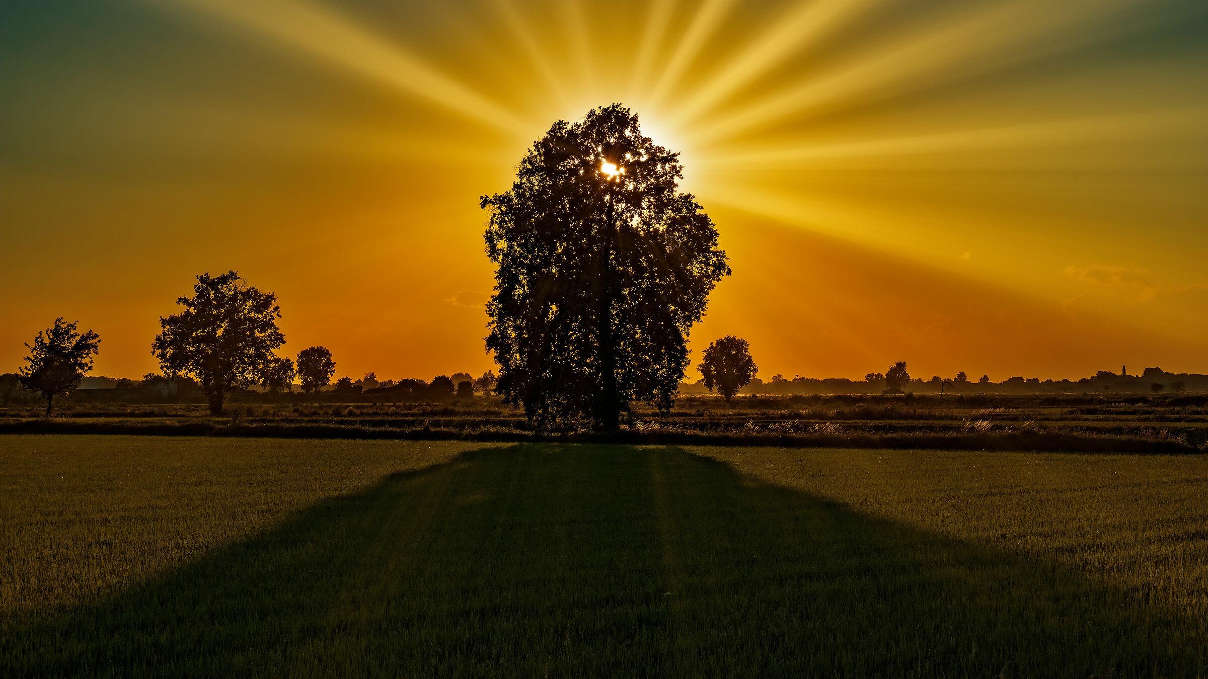 L'ombra lunga del tramonto...