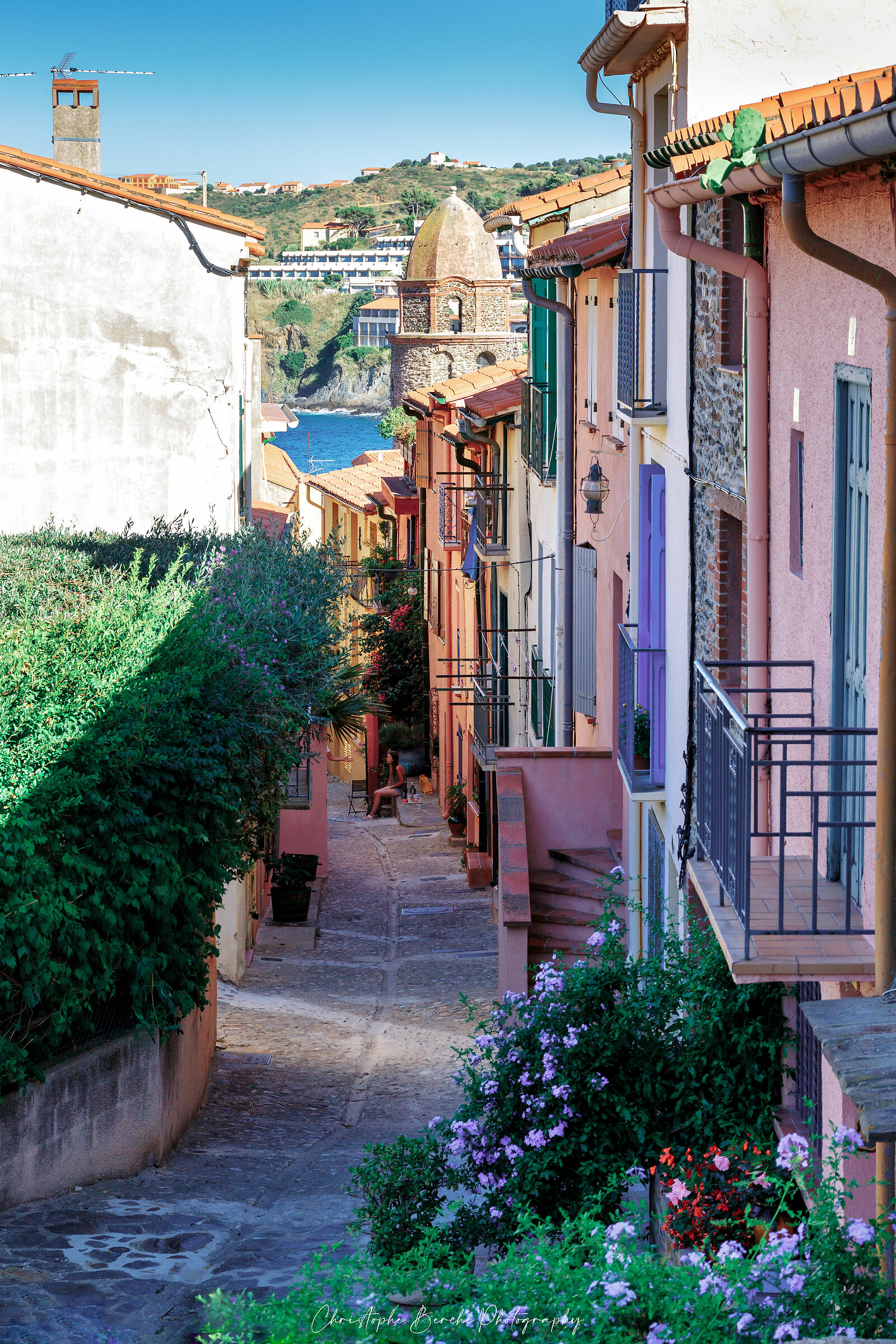 Collioure ( France )...