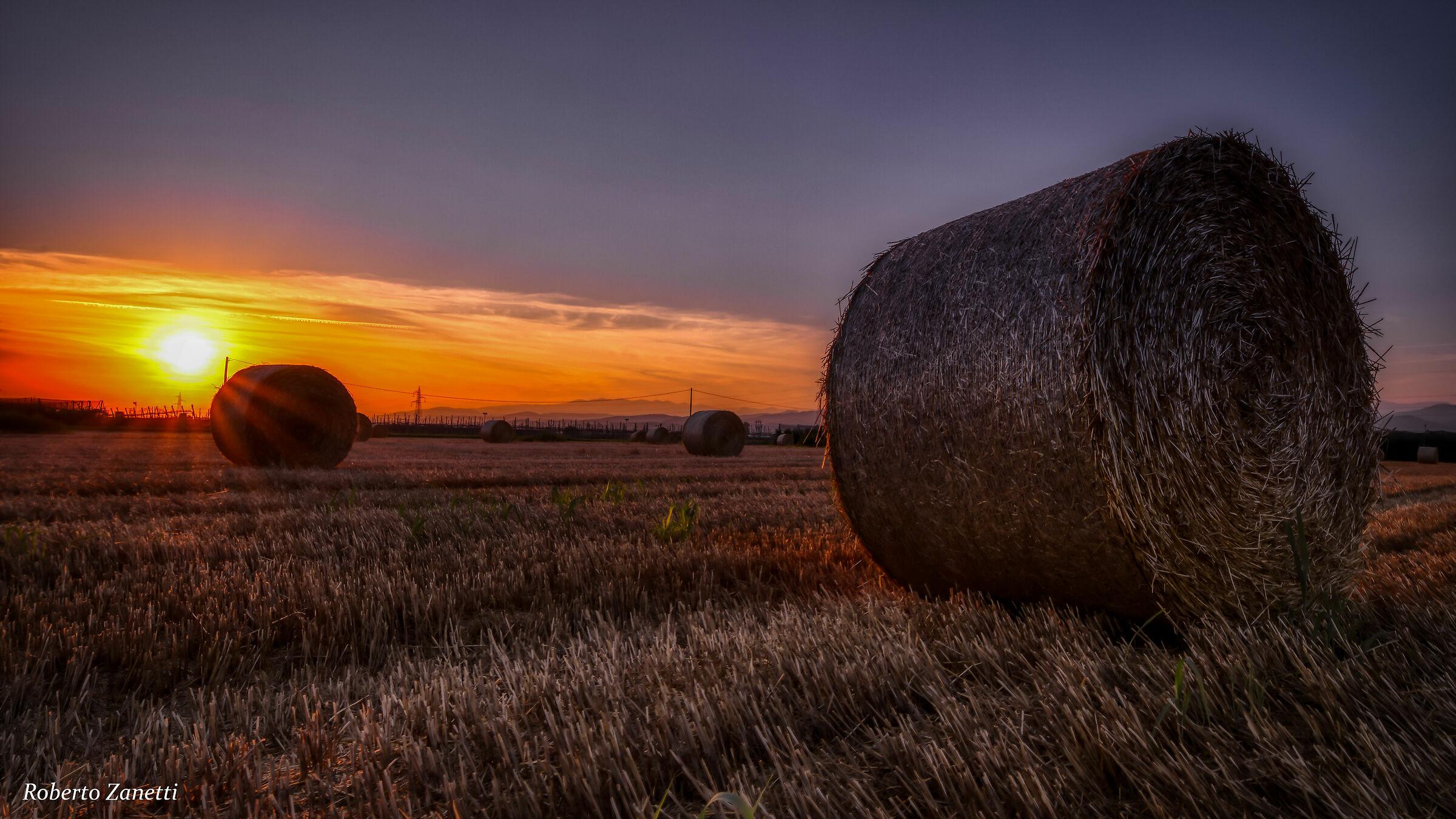 Round bales at sunset...