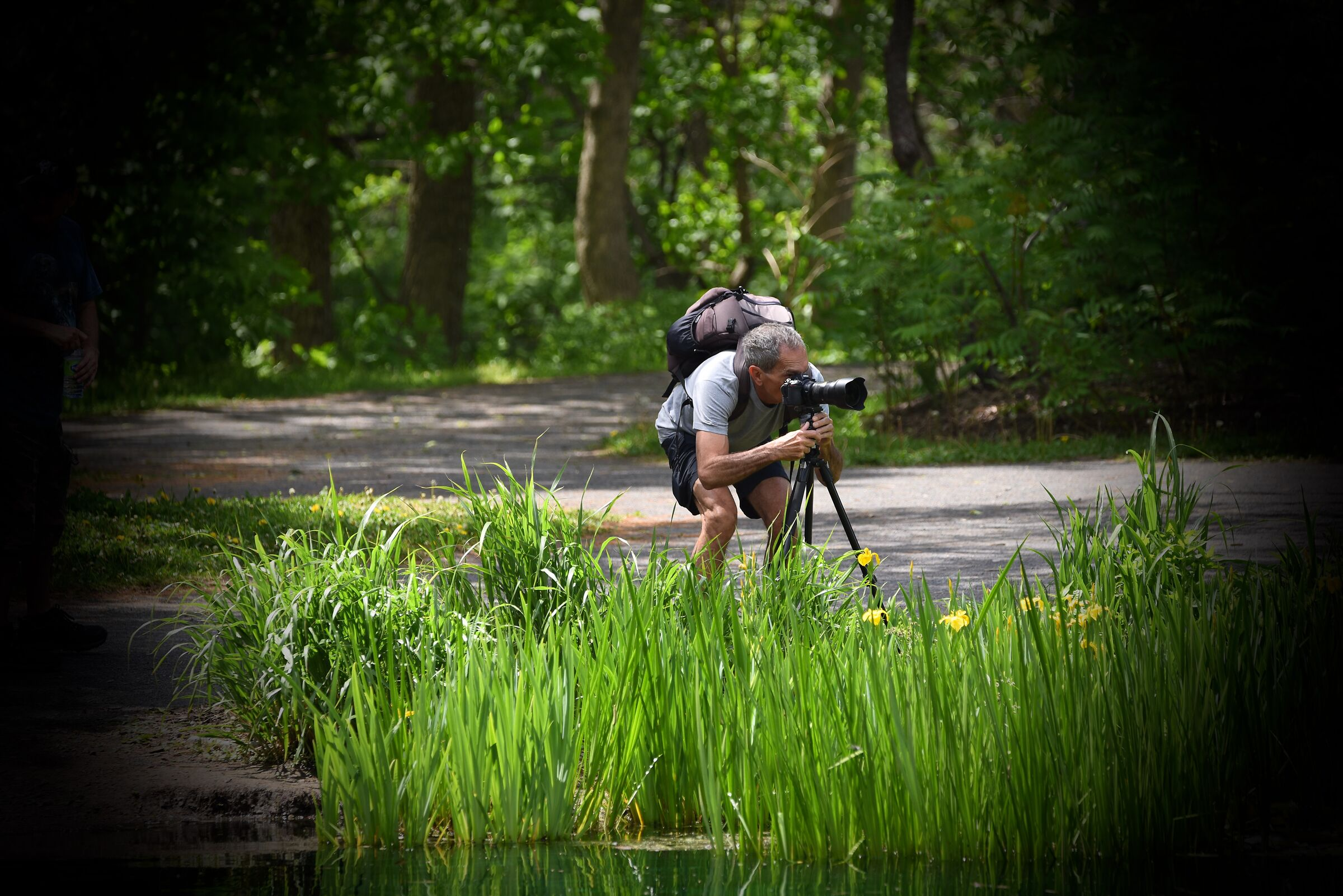 photographer at work '' Action '' Quebec City (Park)...