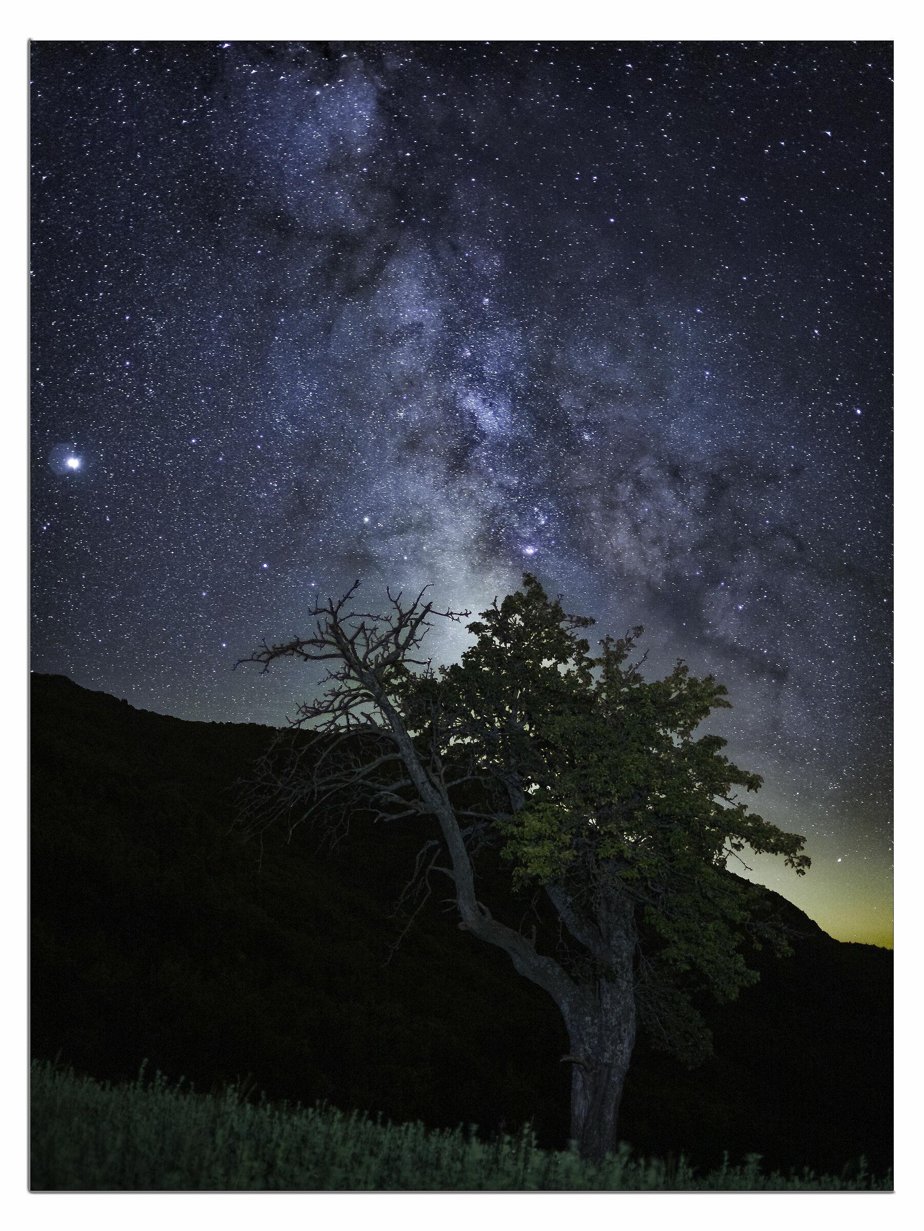 Another Milky Way Development Test...