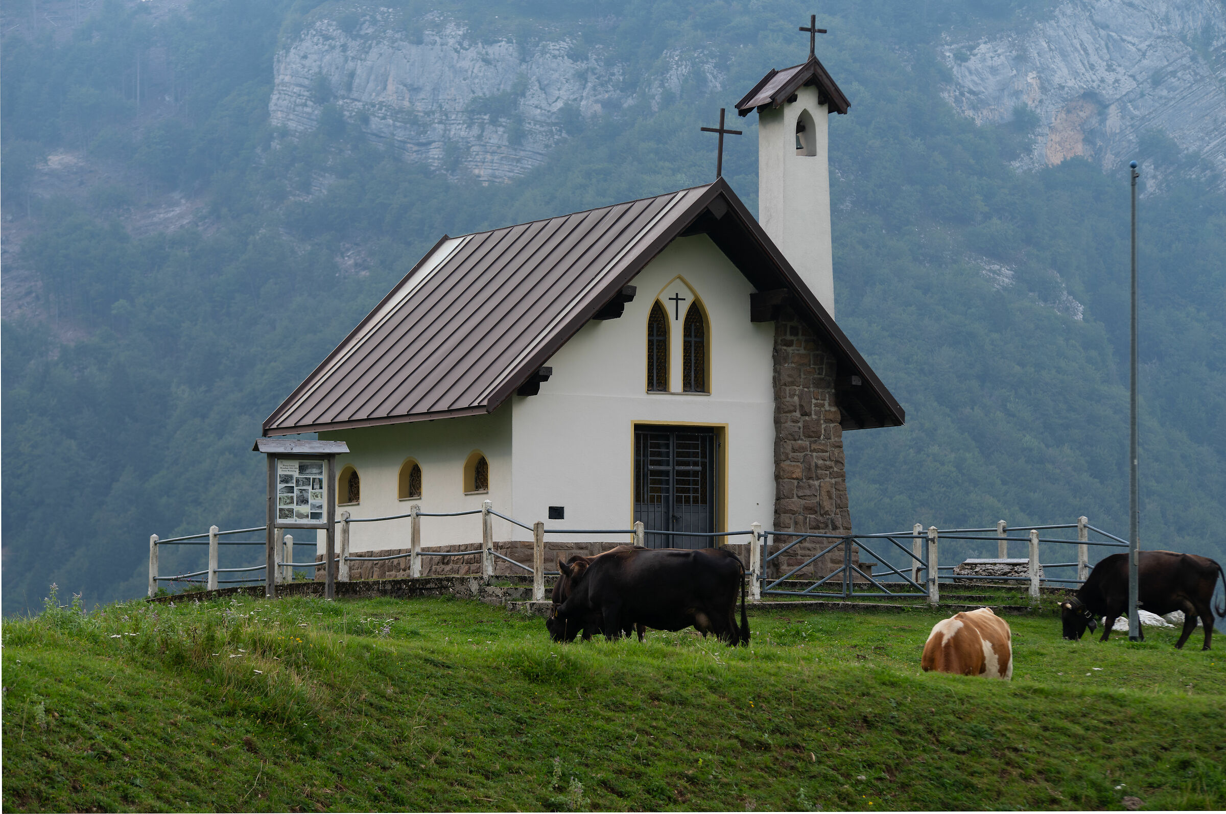 Church with Cows...