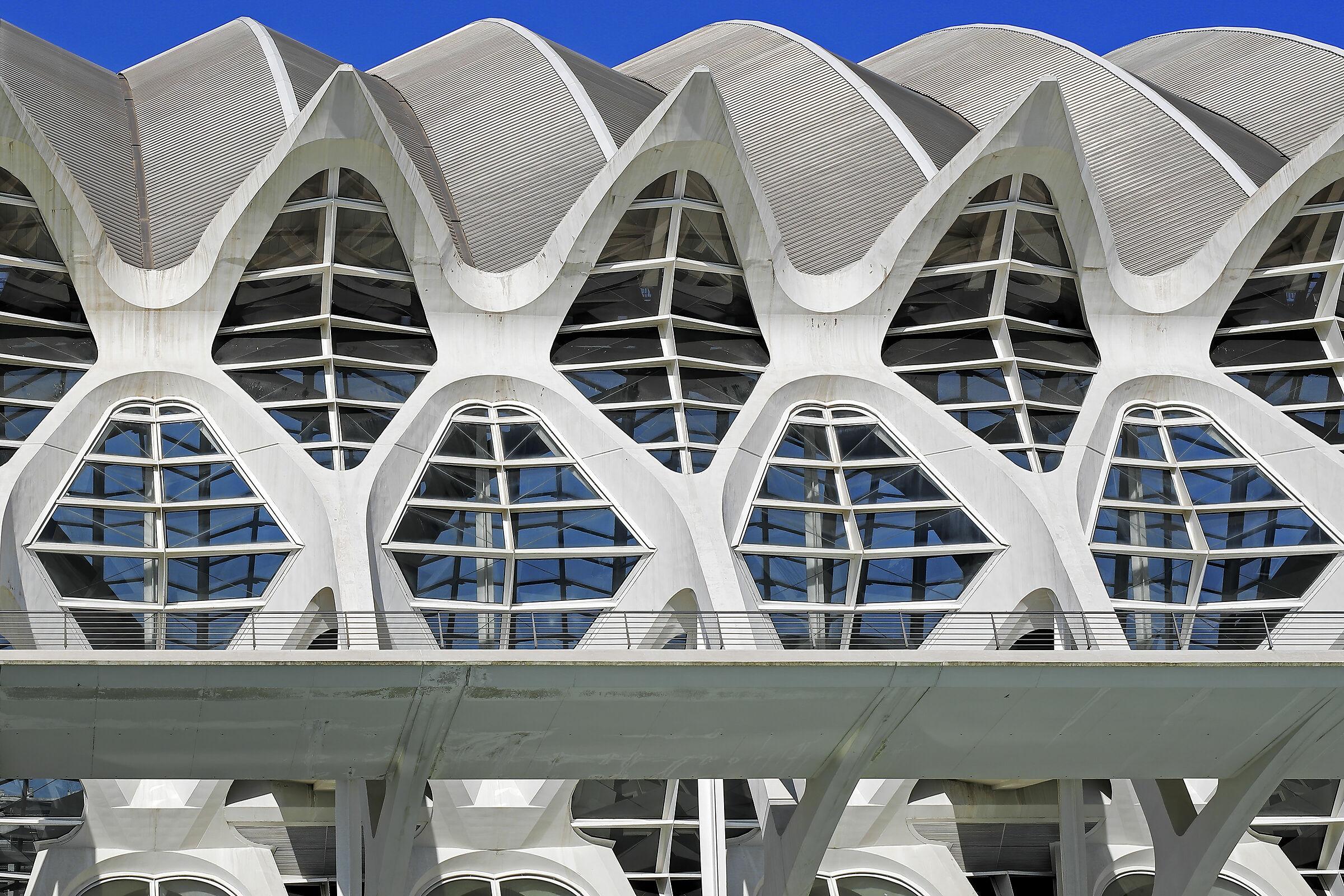Ciutat de les arts i les ciències  Santiago Calatrava...