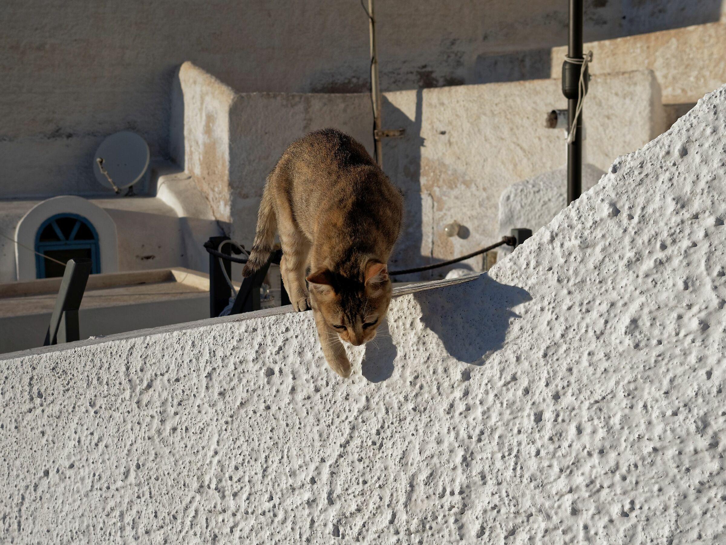 Santorini 16...