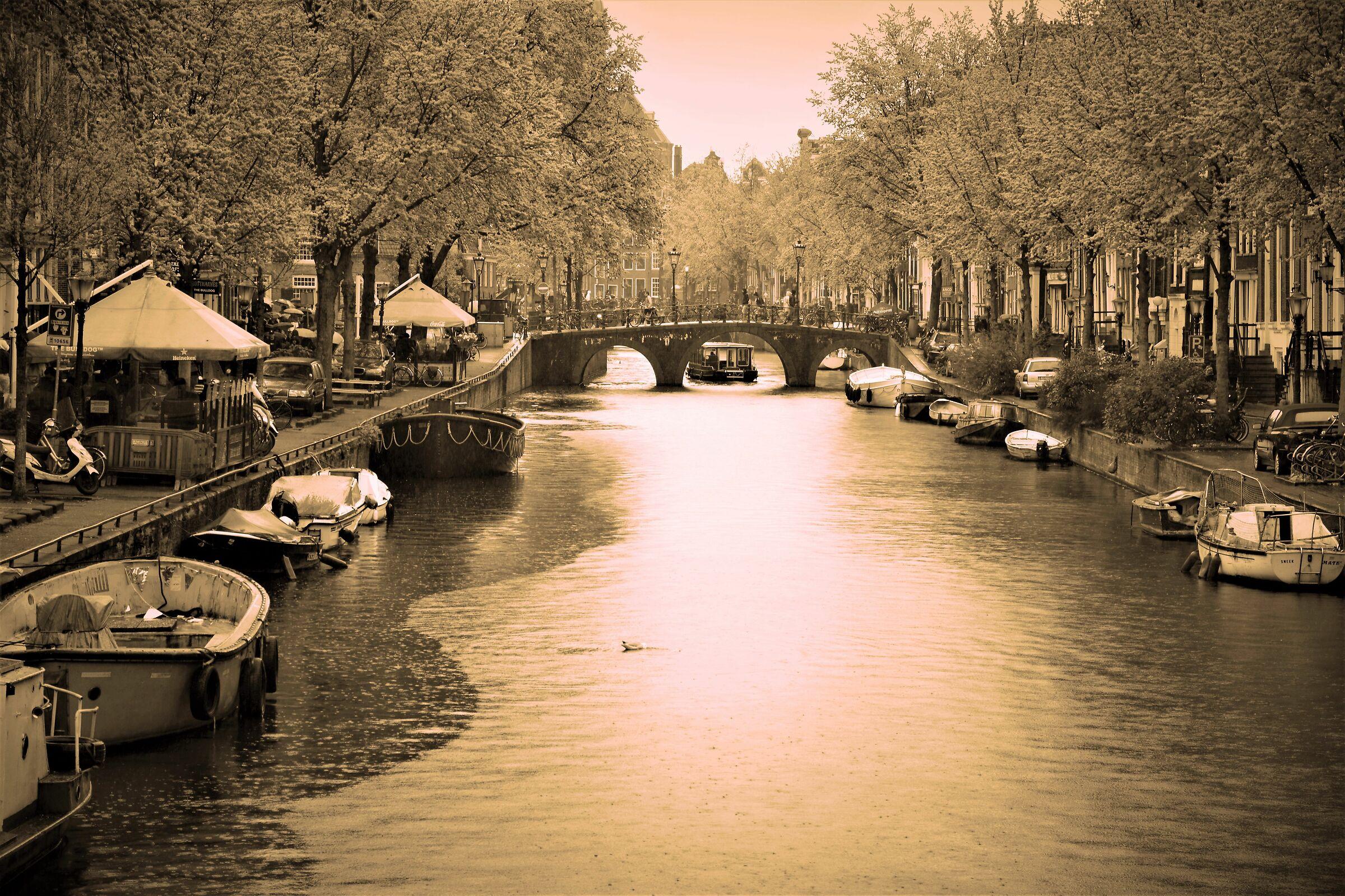 memories of Amsterdam...