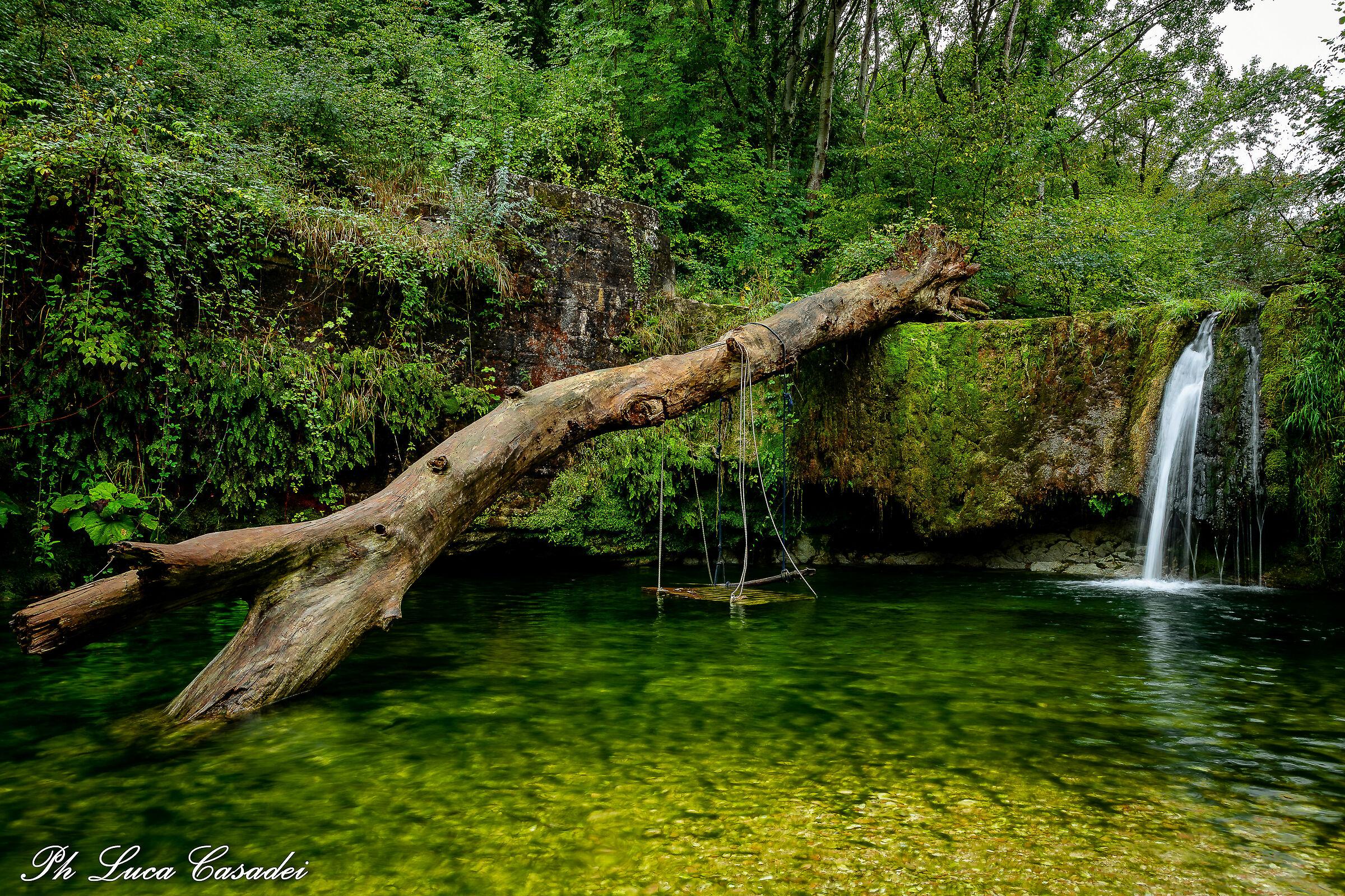 Natura...