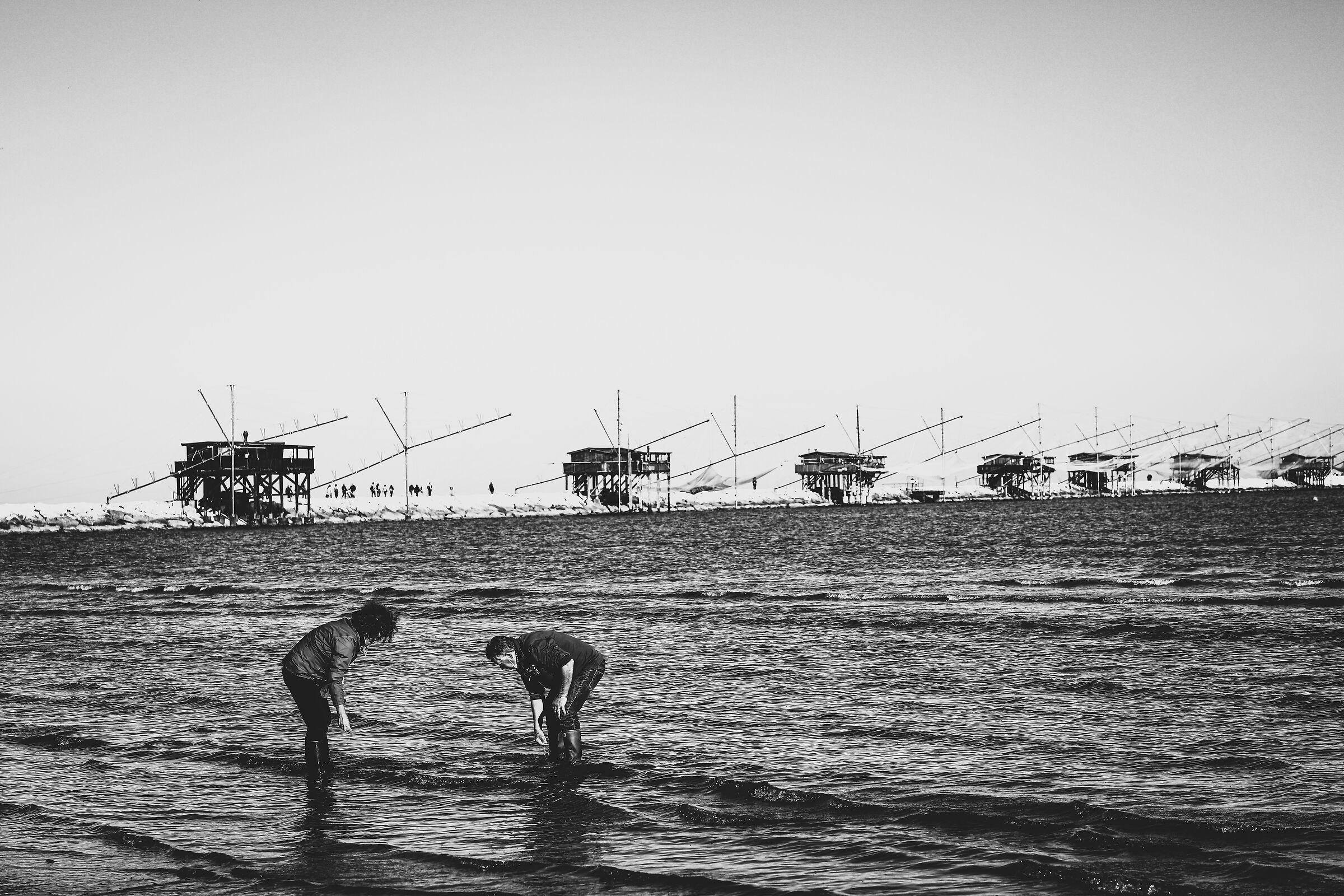 Pescatori...