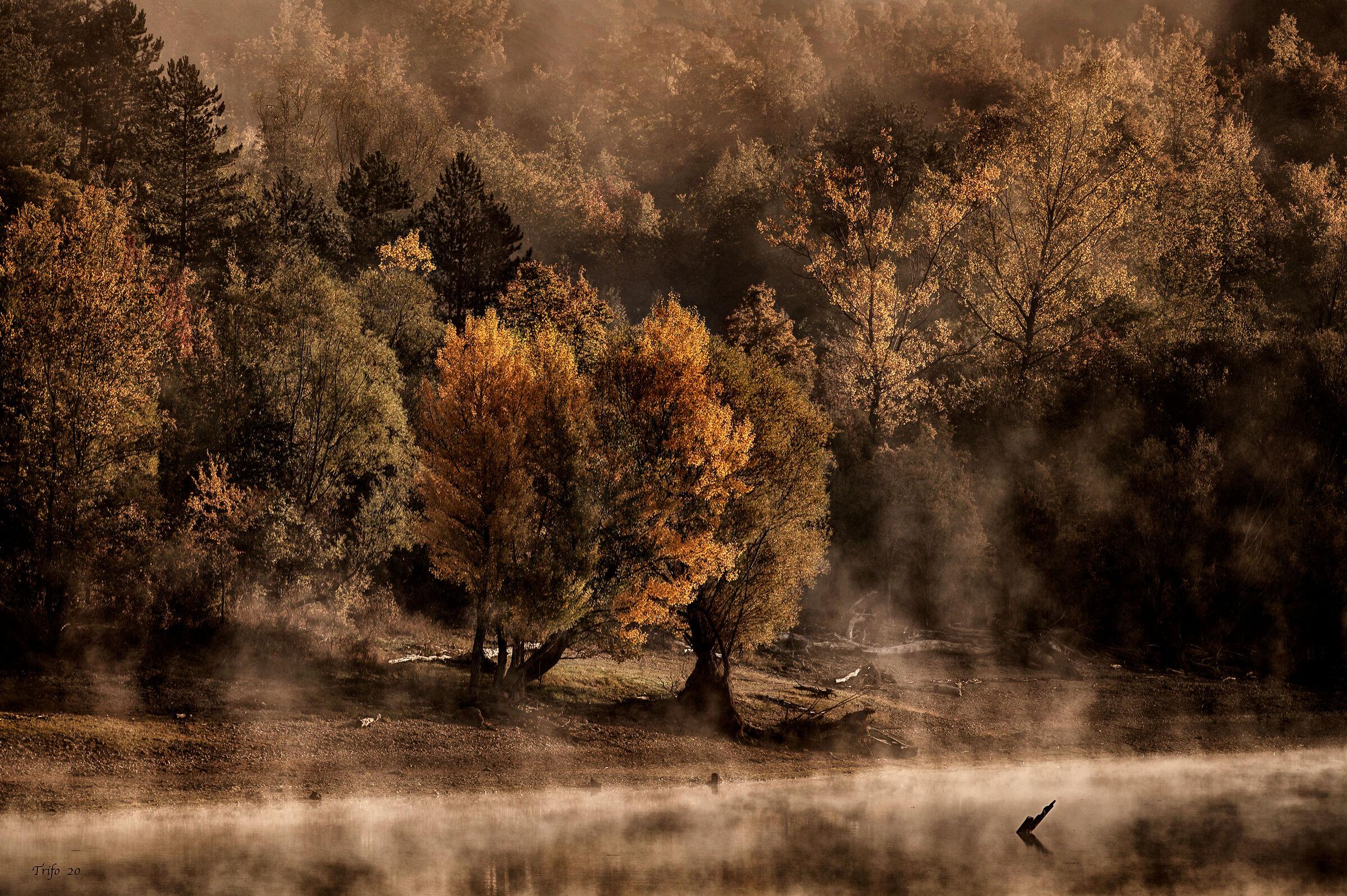 Autumn on the lake...