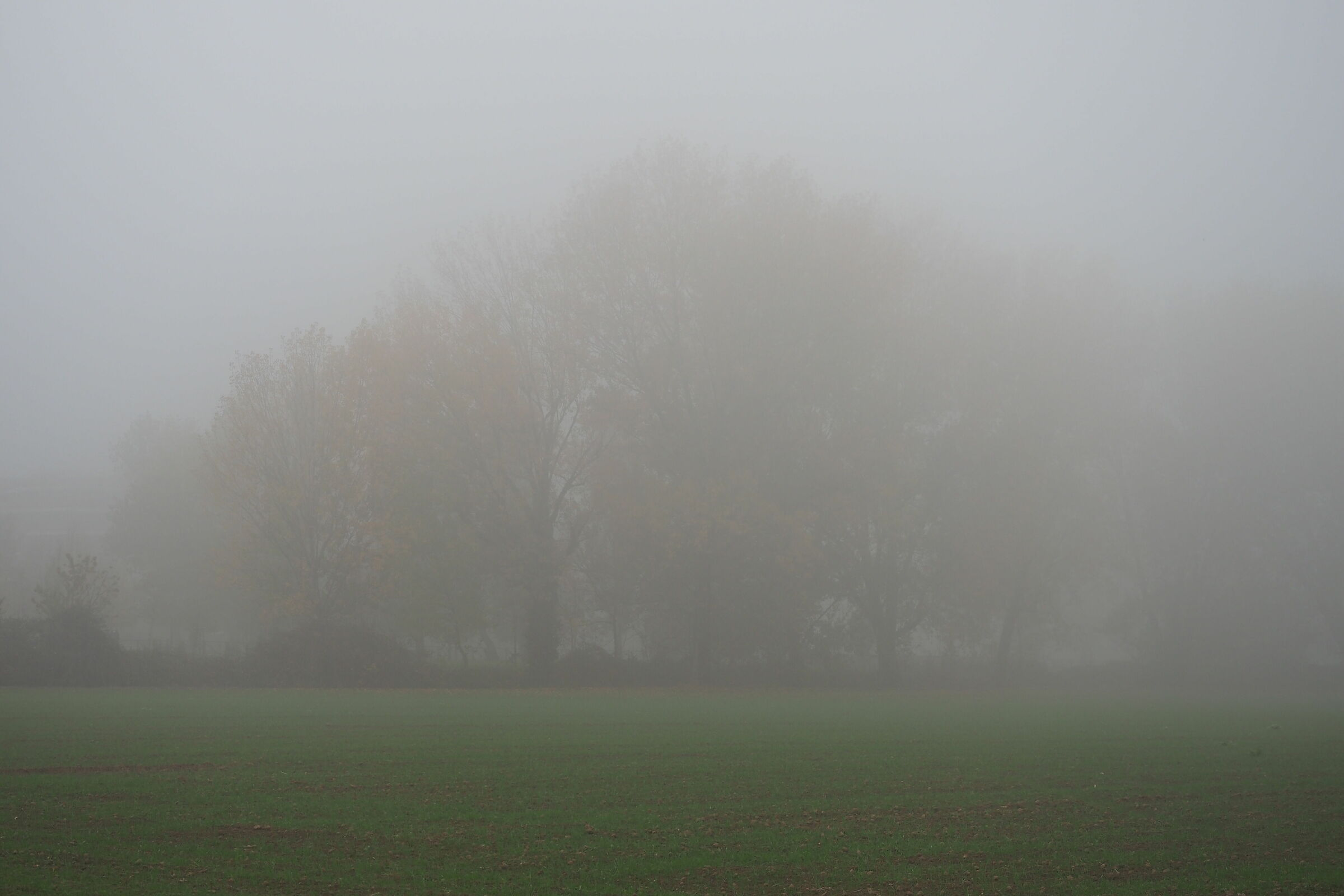 Sunday afternoon on the outskirts of Milan with fog...