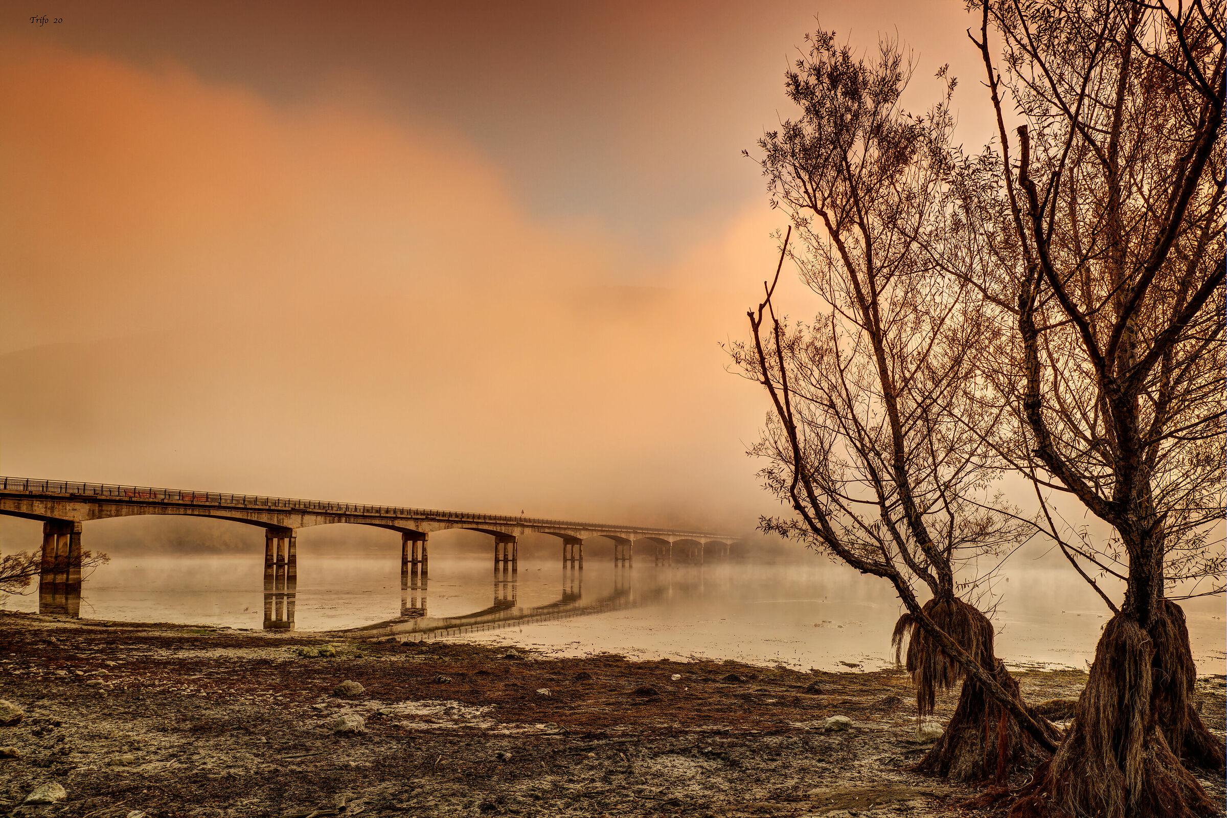 Fog at Dawn .......