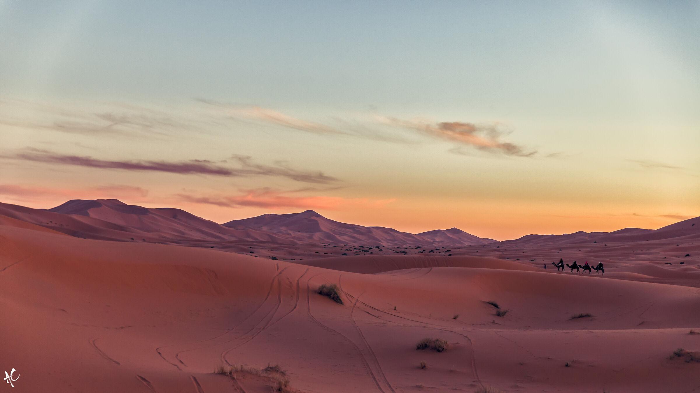 Nel deserto, al tramonto...