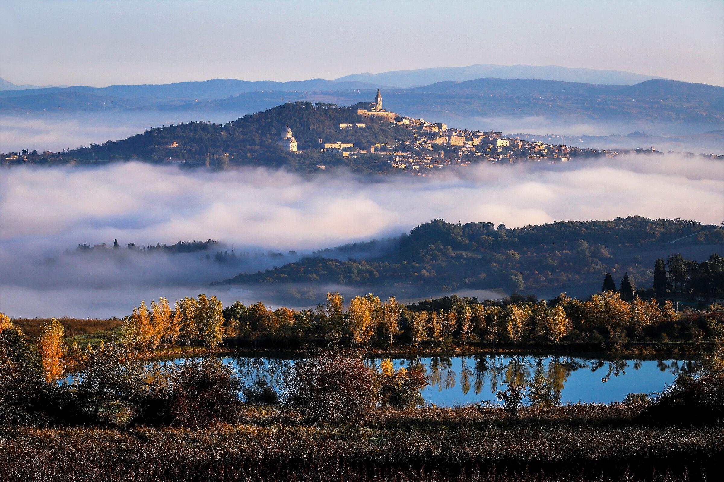 Good morning Todi...
