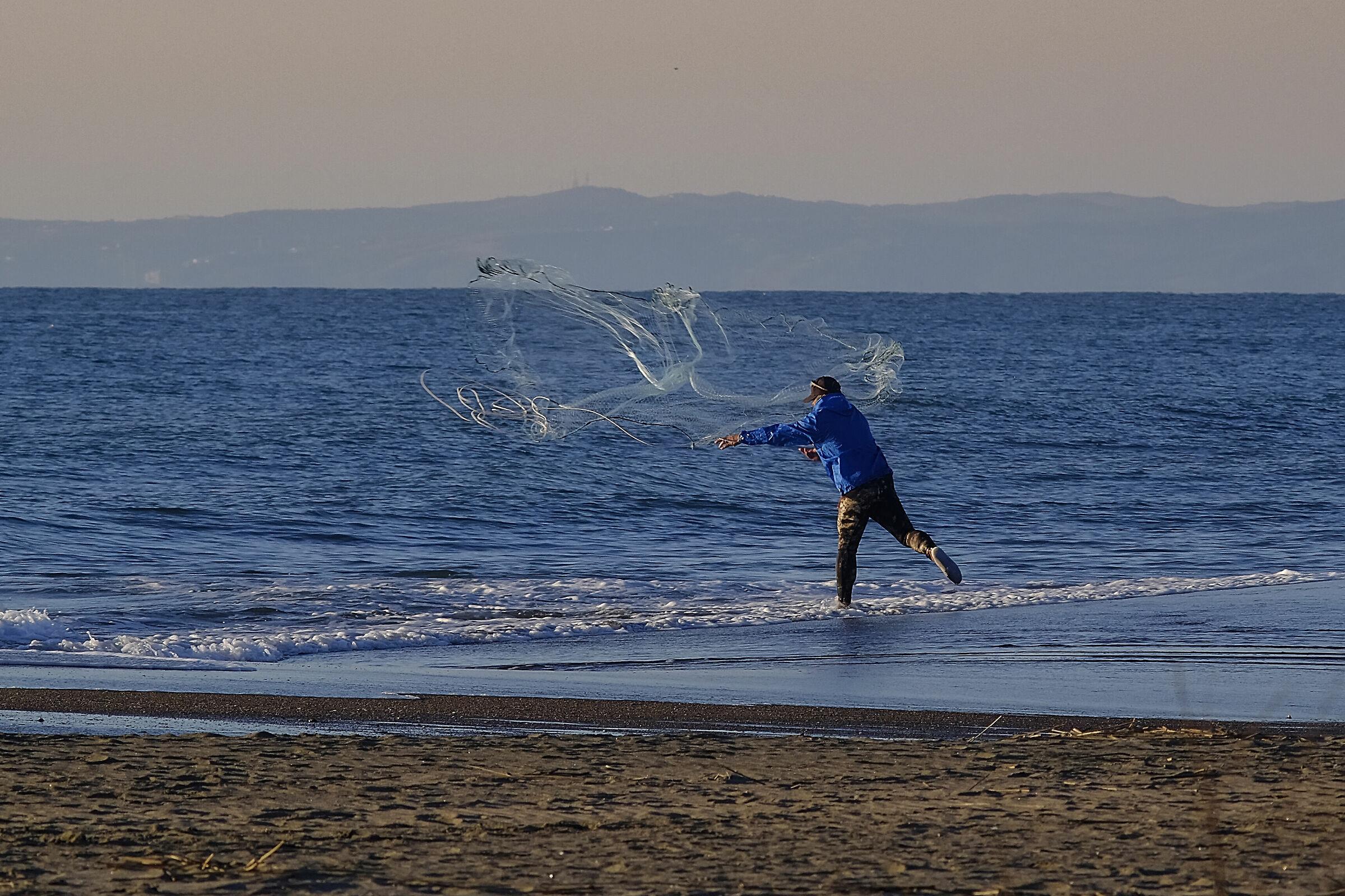 Cephalo fishing......