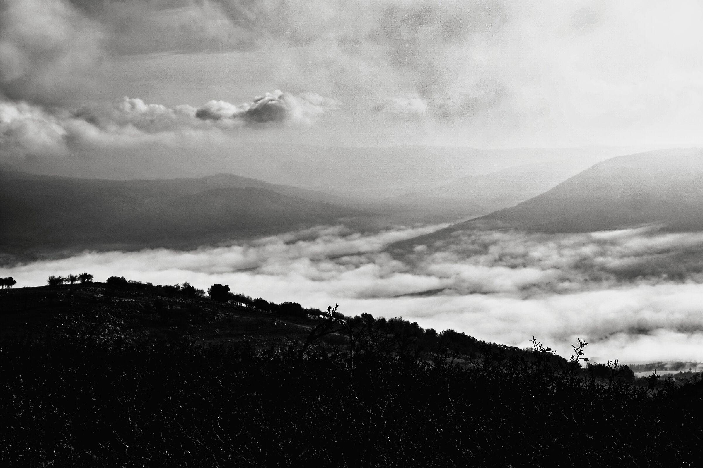 Mare di nebbia ...senza viandante...