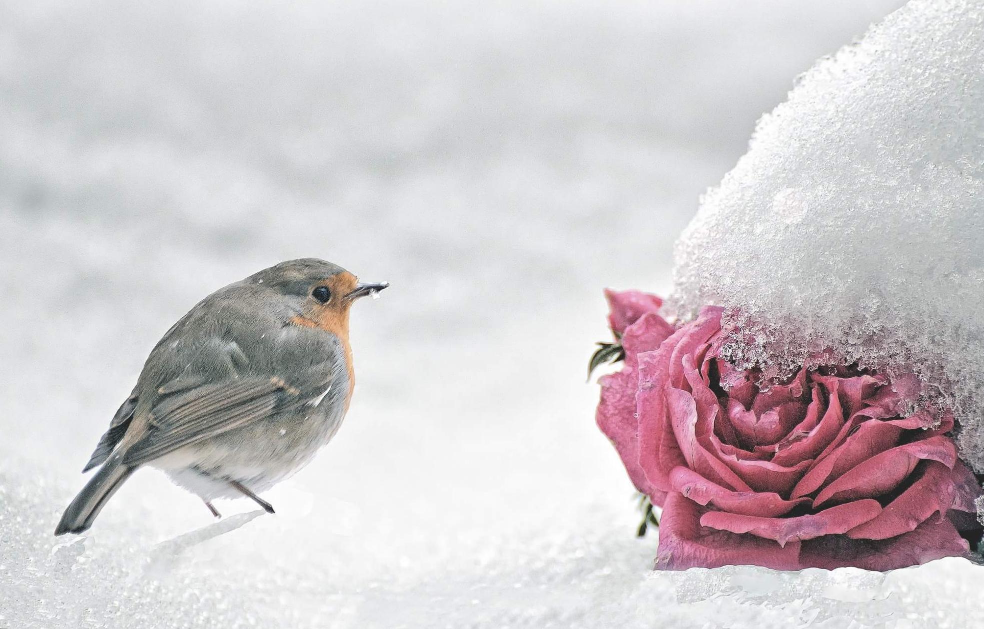Inverno...