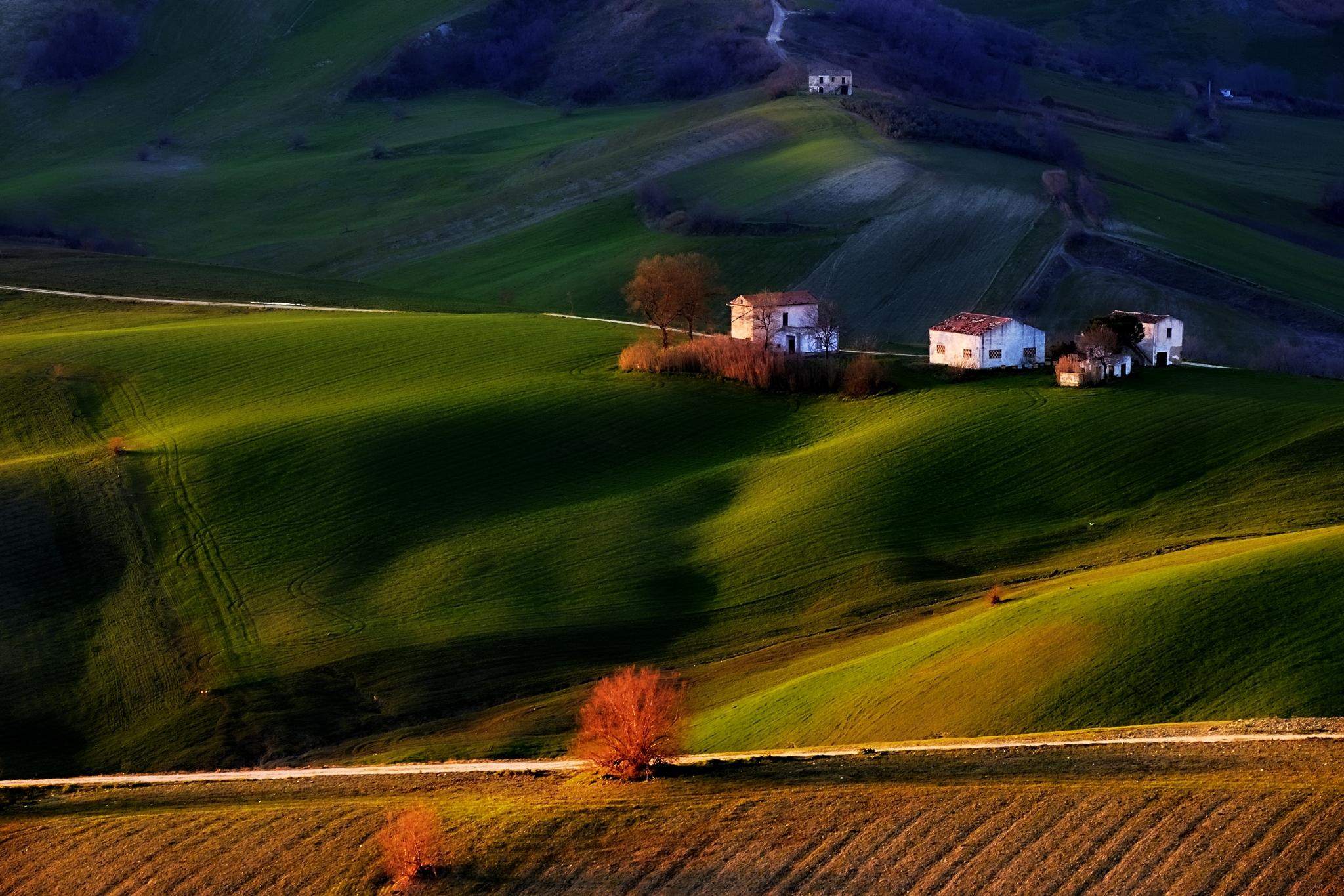 Velvety Hills...