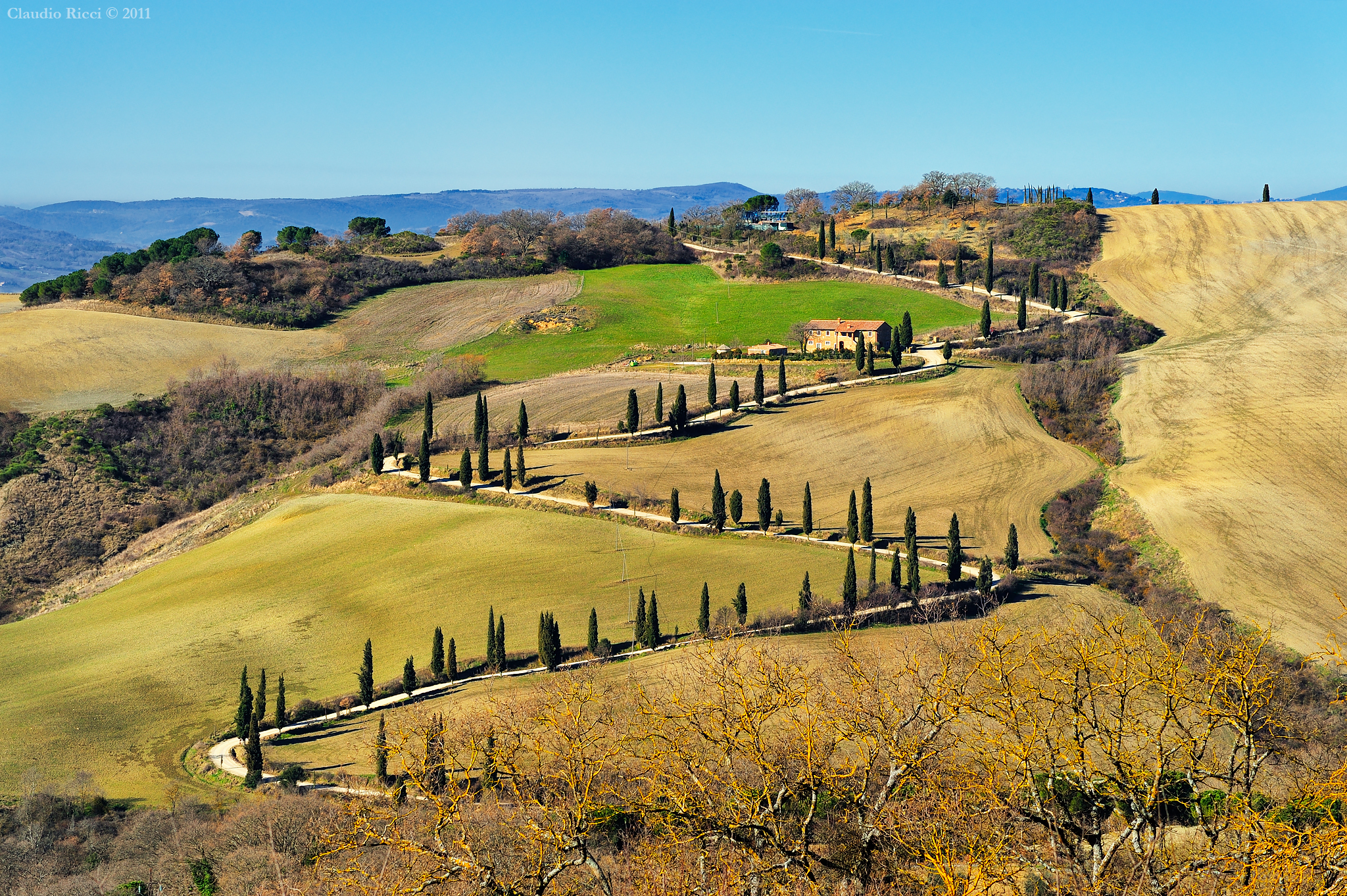 Tuscan Classic (with broken cypress trees...) ...