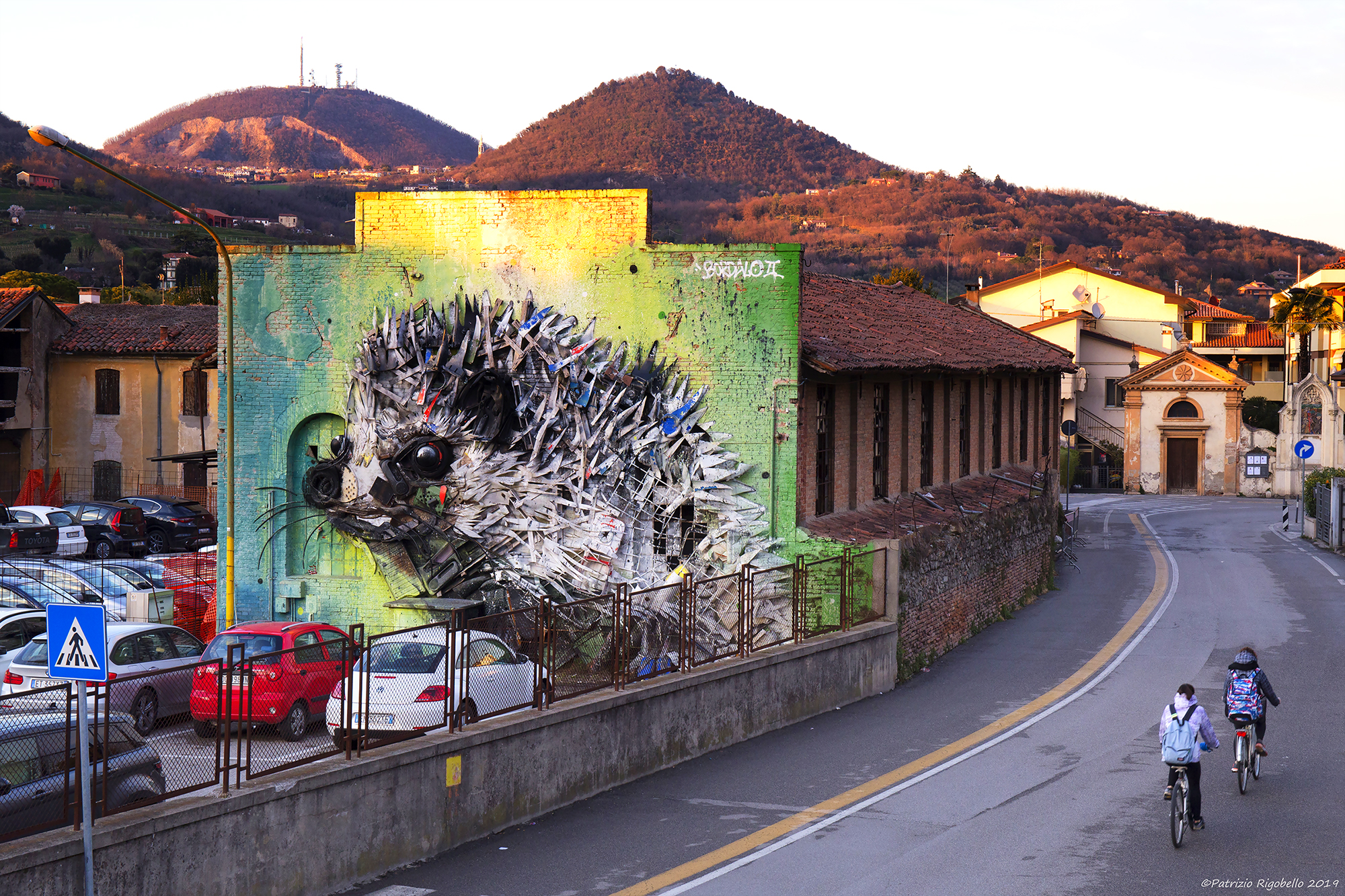 The hedgehog of Bordalo II in Este...