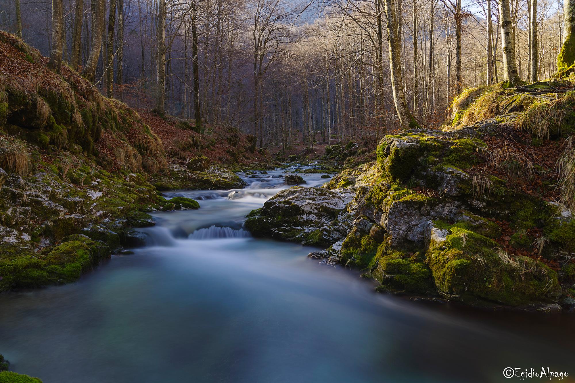 Suoni e colori della natura...