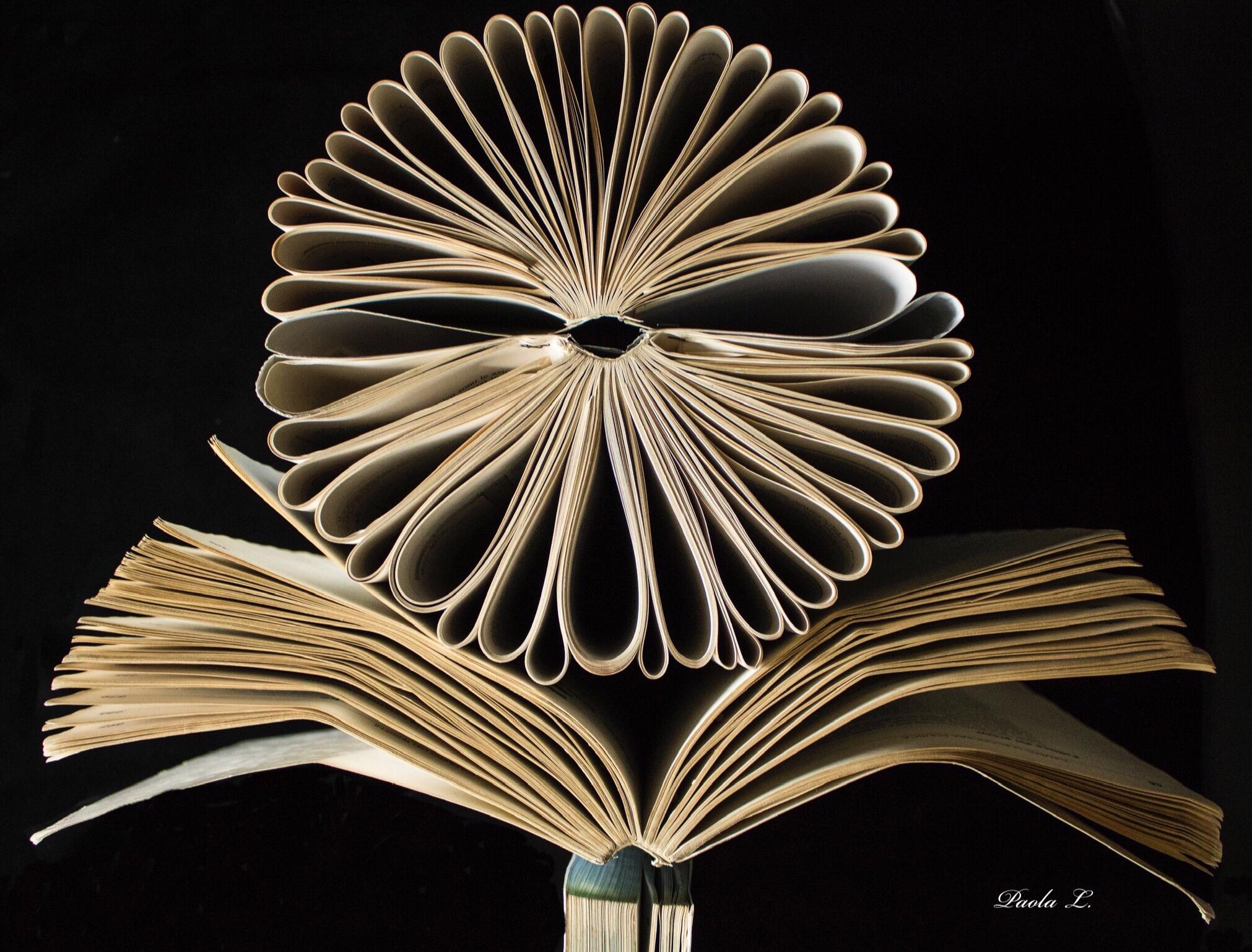 Flower Book...