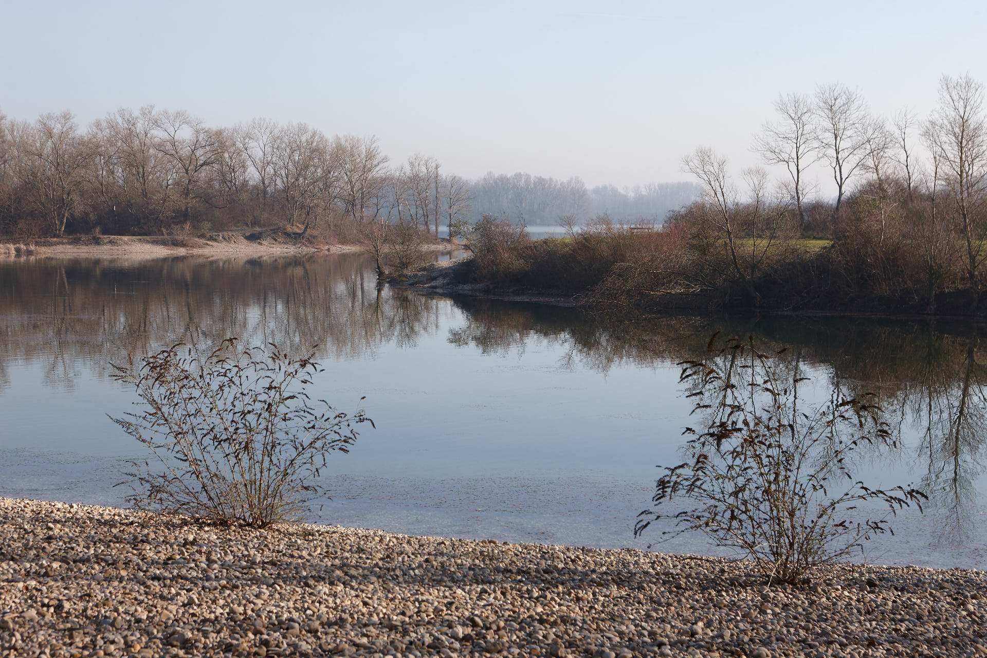 Lac de Miribel...