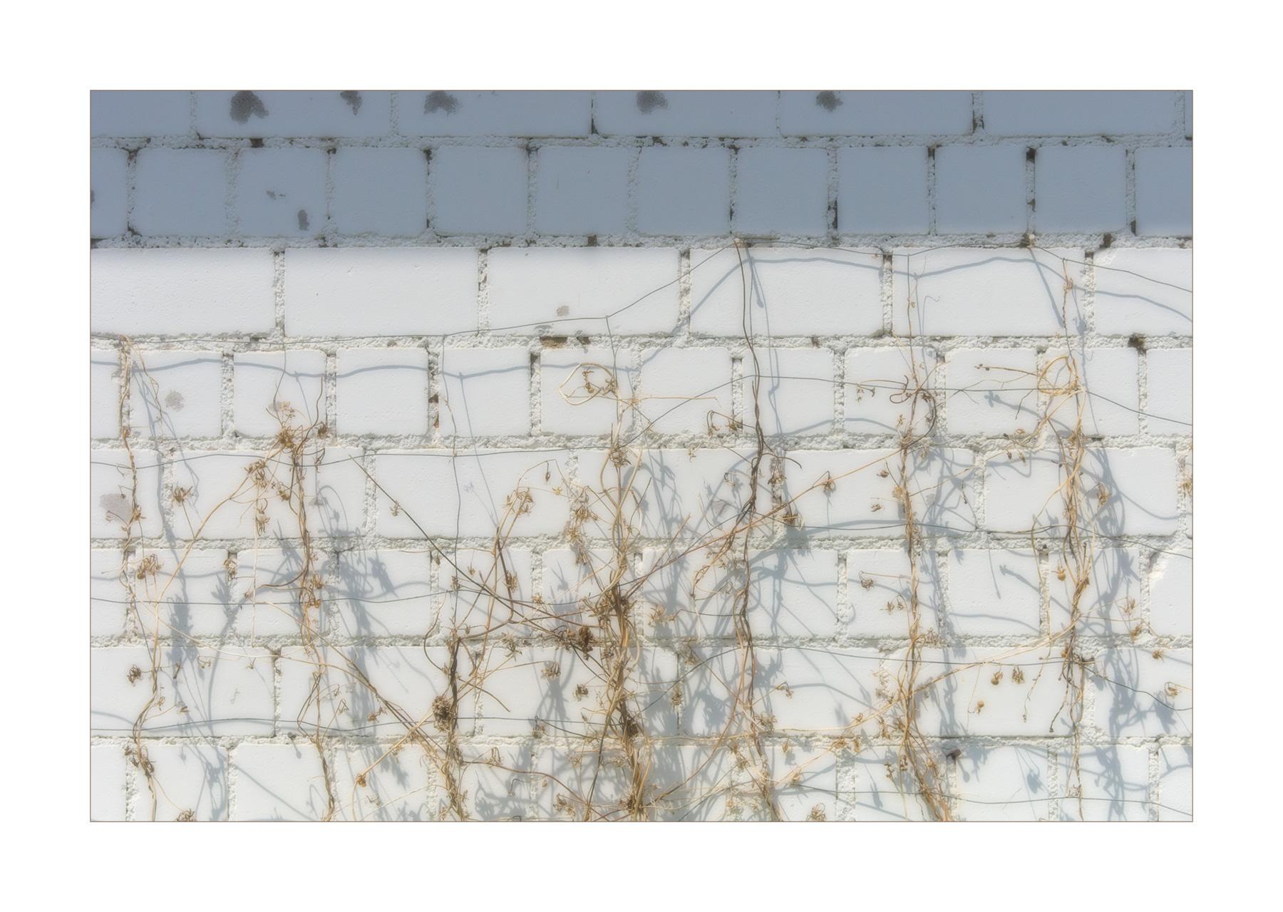 Soft Wall...
