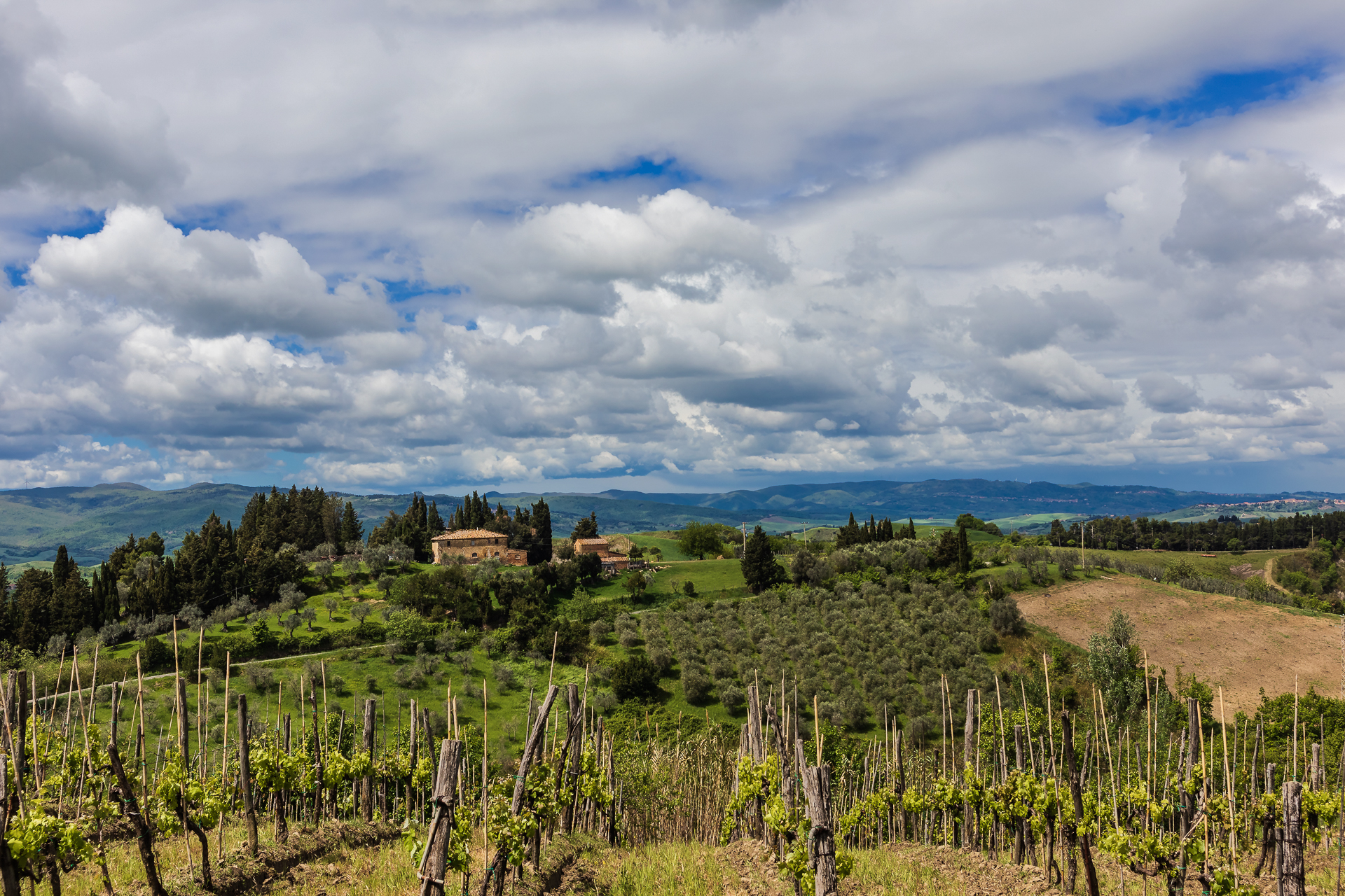 Tuscan Hills...