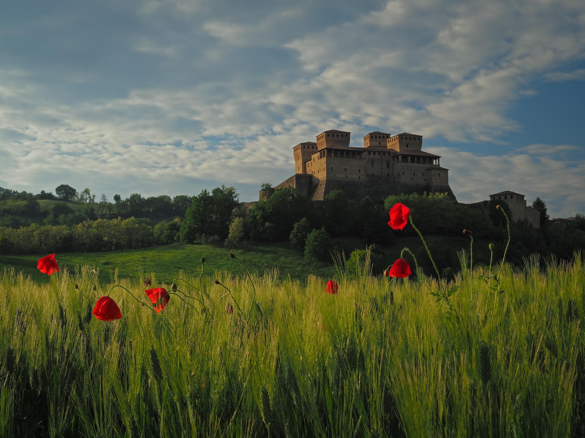 Postcard from Torrechiara ...