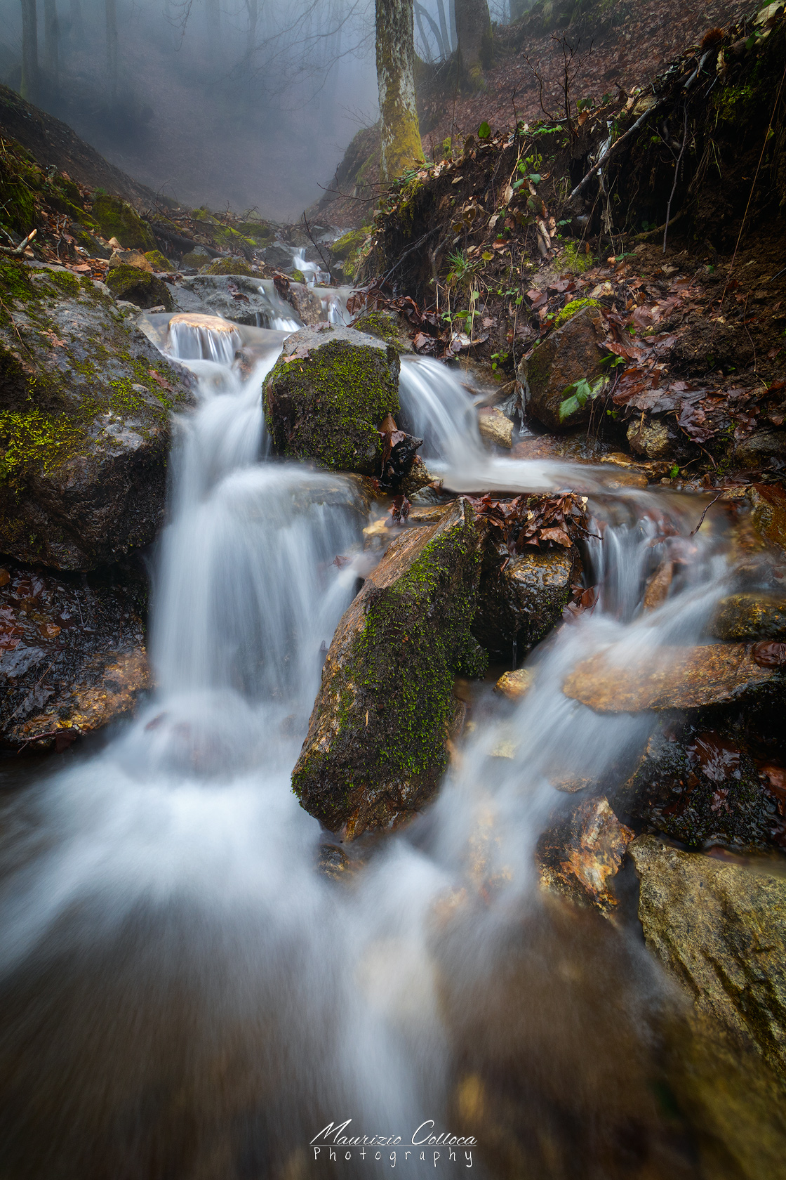 Small waterfall in to the woods...
