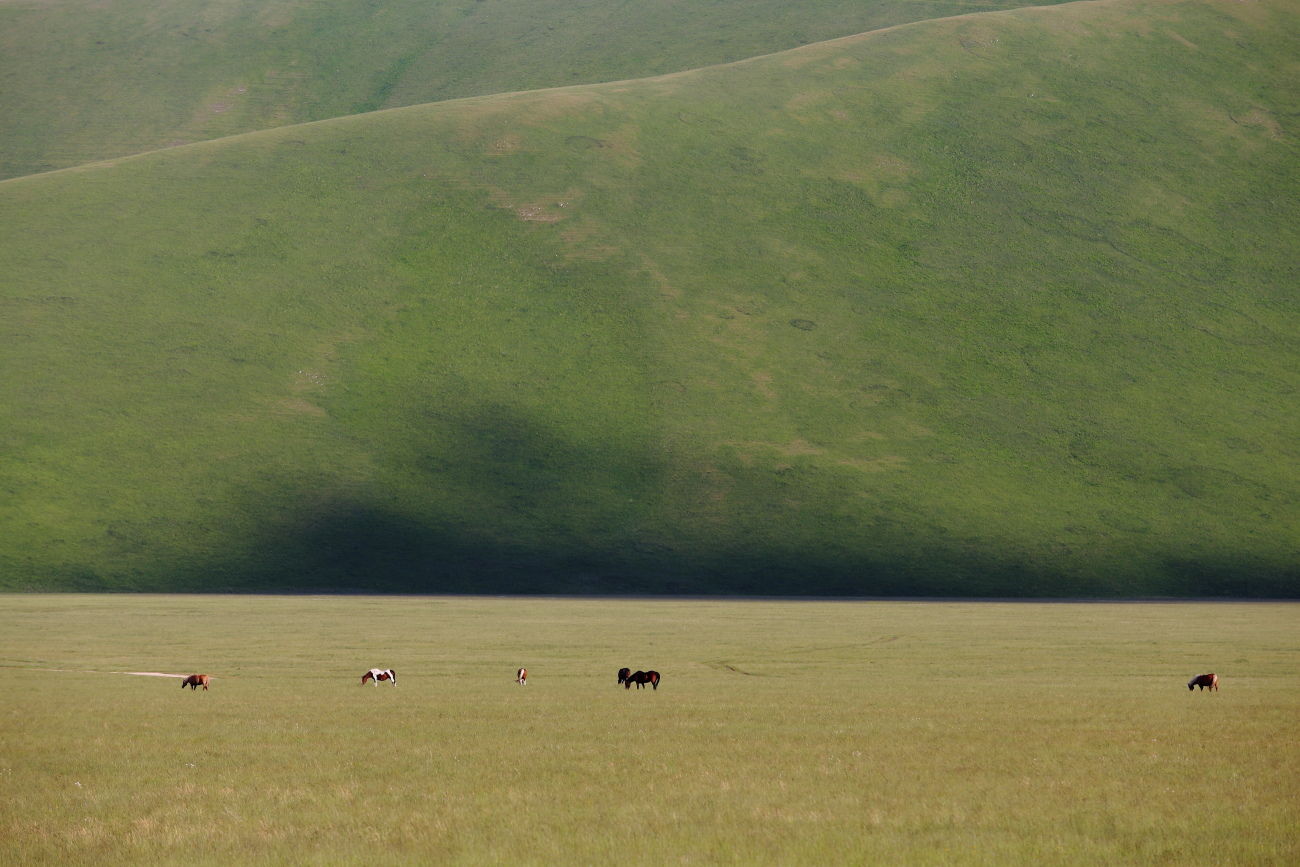 Plain of the Sibillini Mountains. Castelluccio Di Norcia....