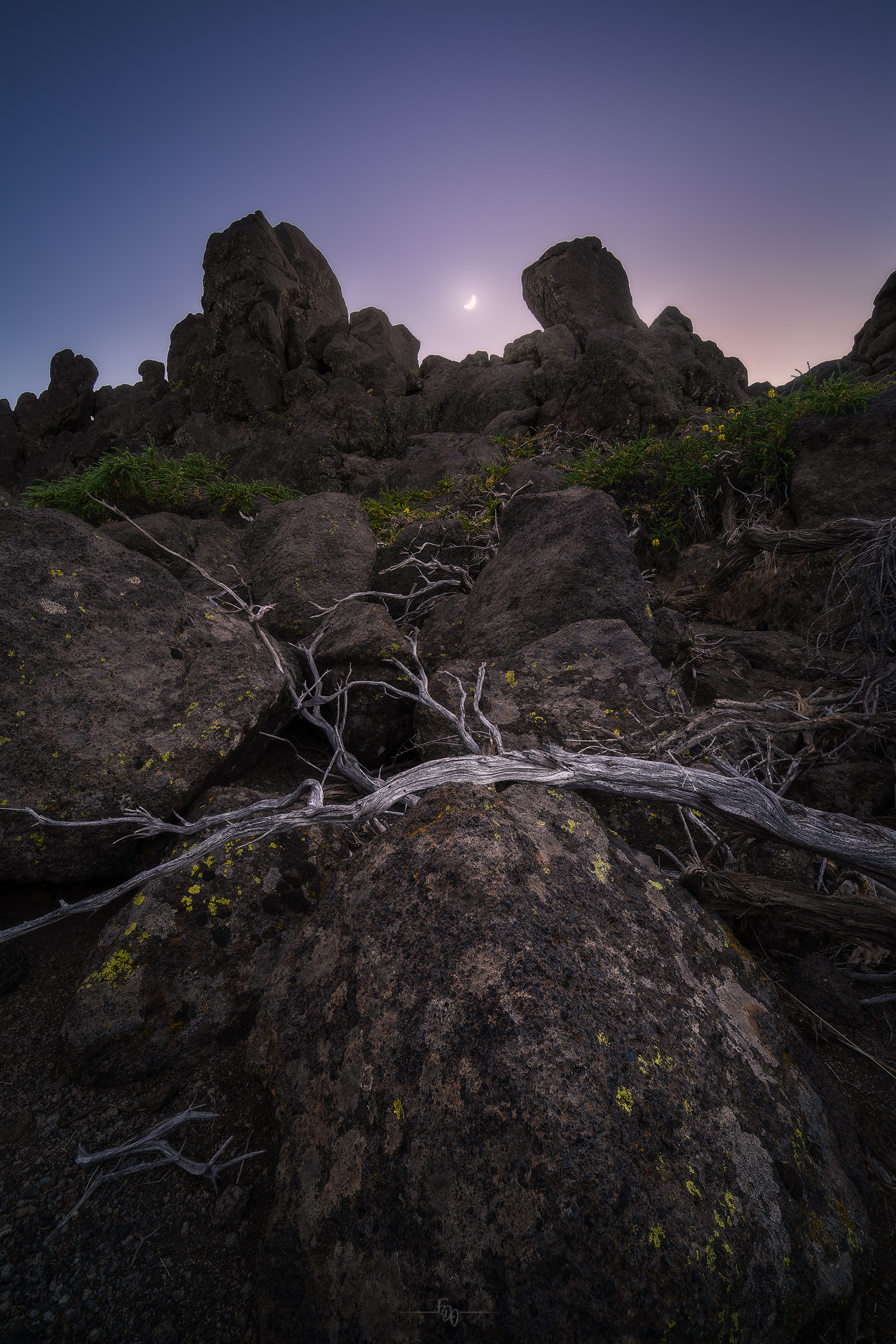 Moon lighting up branches and rocks...