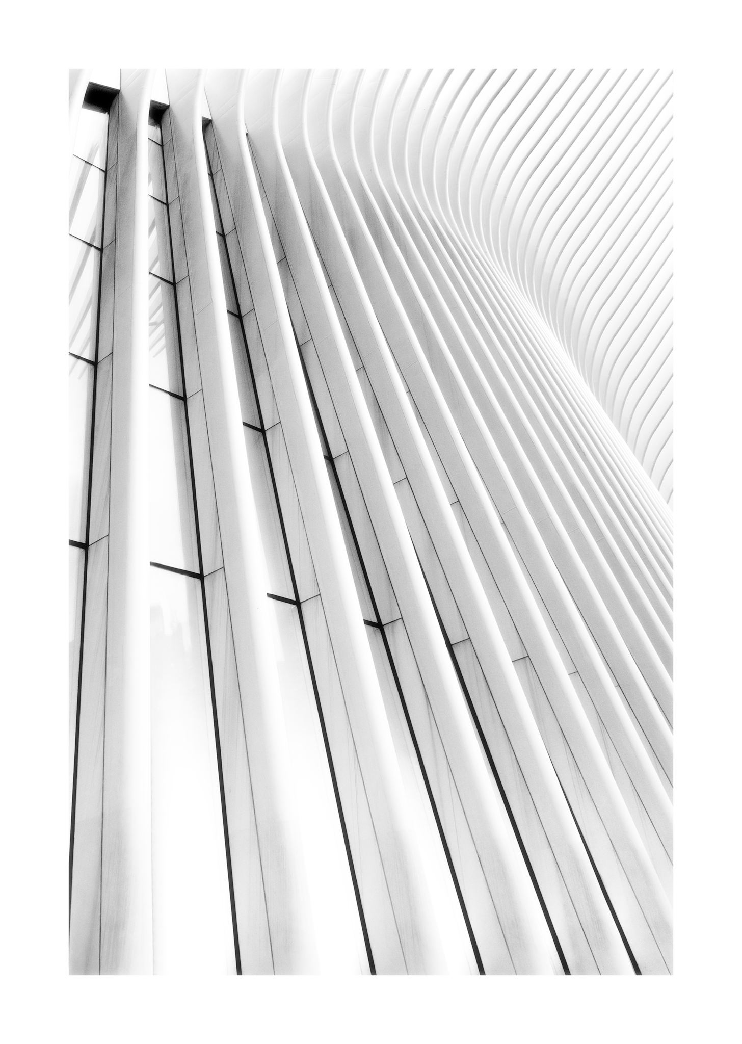 The Oculus, NYC...