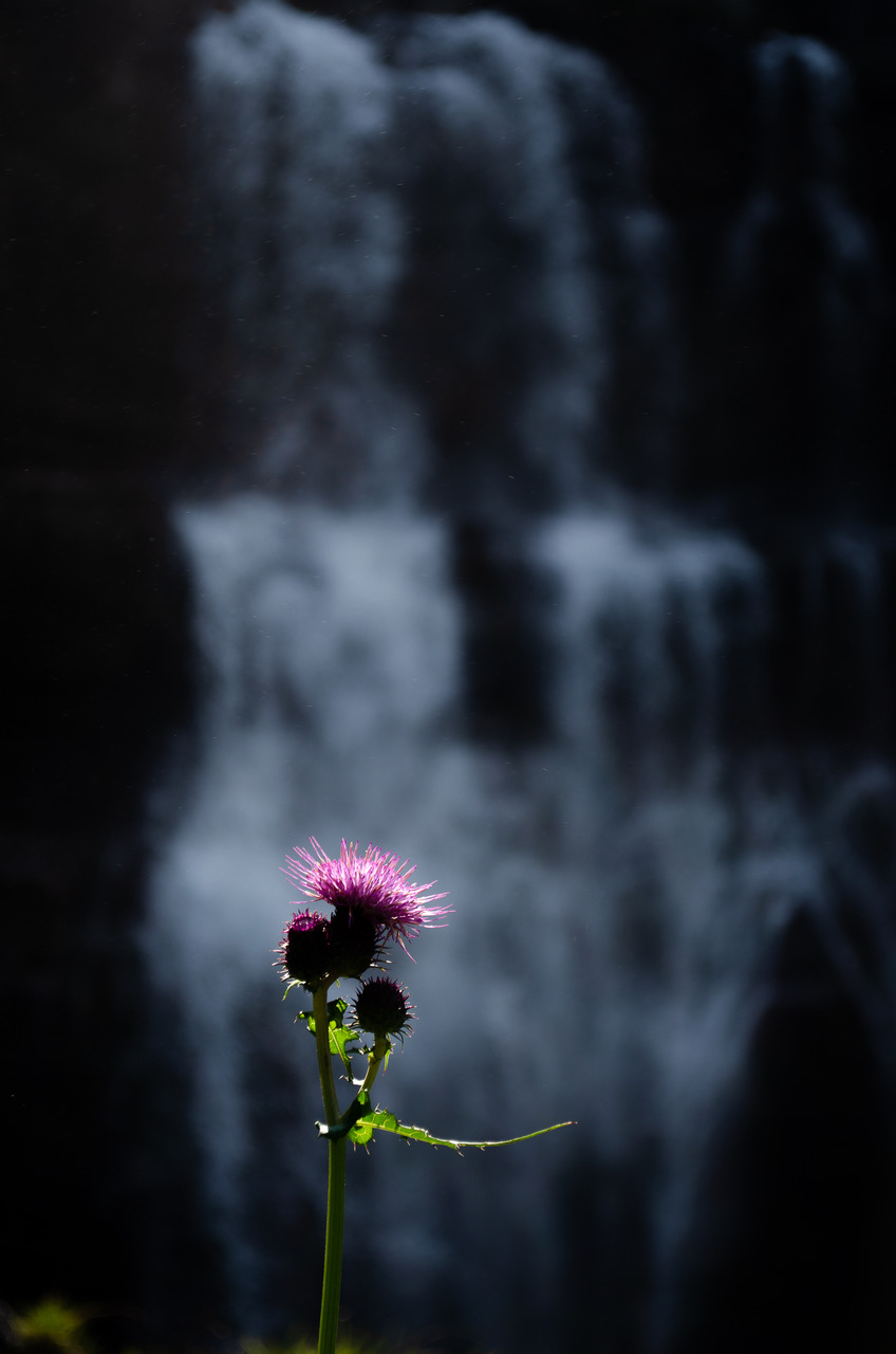 Ai piedi della cascata...